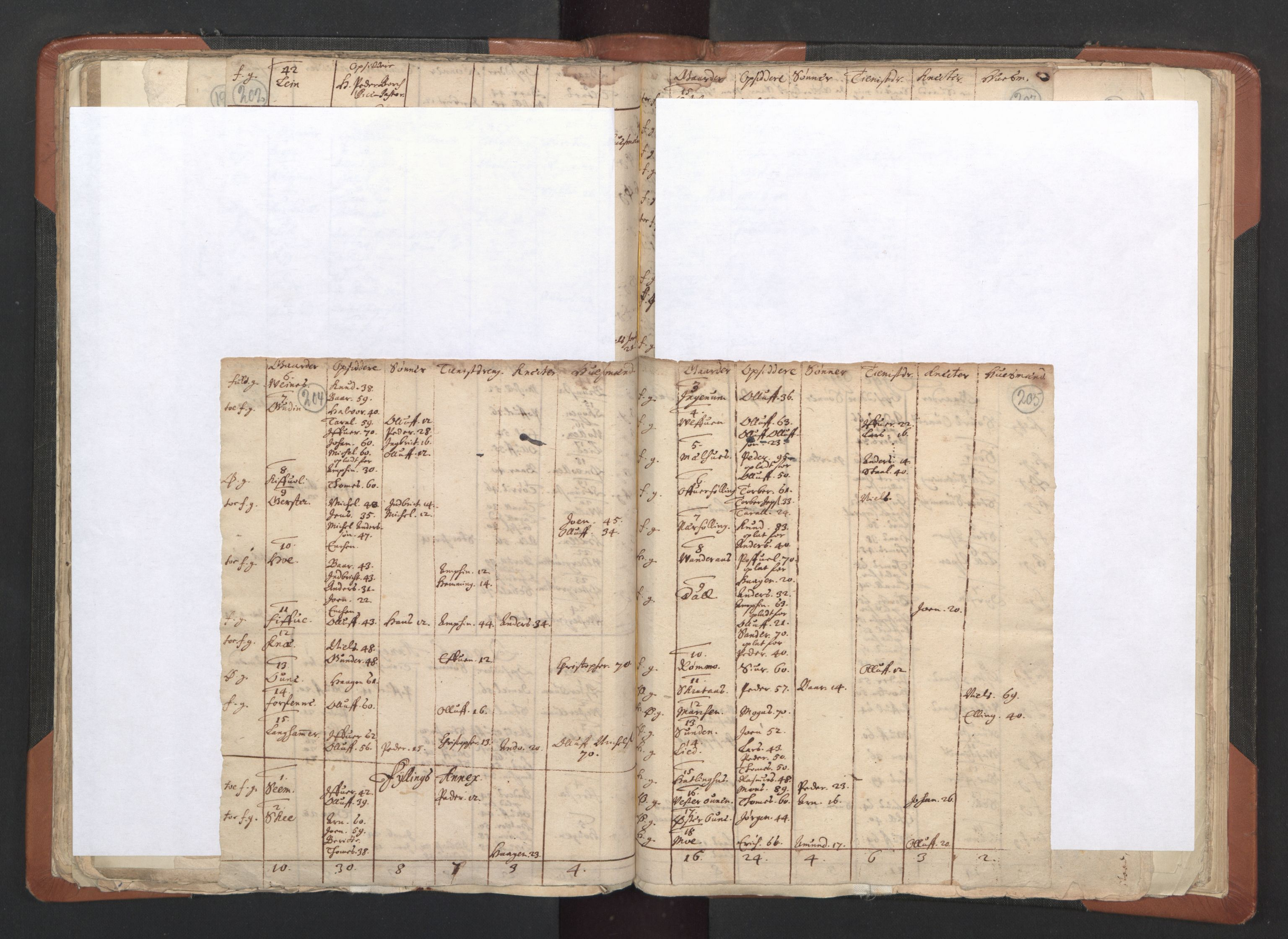 RA, Sogneprestenes manntall 1664-1666, nr. 33: Innherad prosti, 1664-1666, s. 204-205