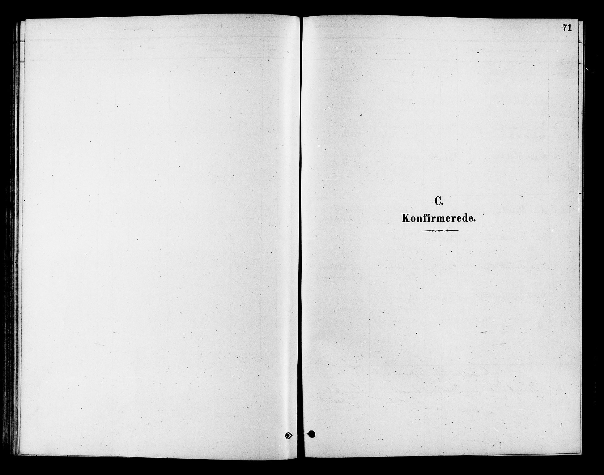 SAKO, Flesberg kirkebøker, F/Fc/L0001: Ministerialbok nr. III 1, 1879-1905, s. 71