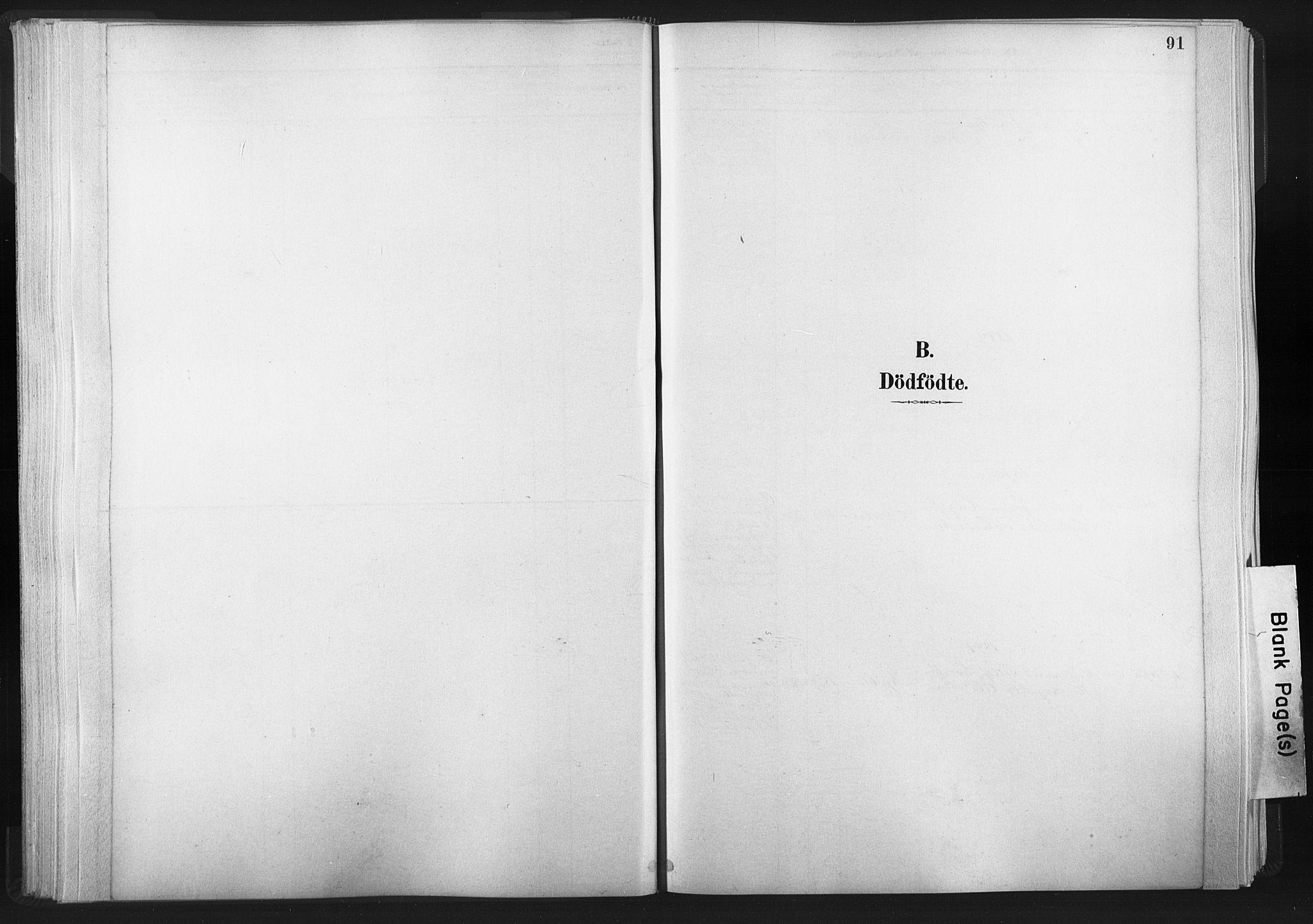 SAT, Ministerialprotokoller, klokkerbøker og fødselsregistre - Nord-Trøndelag, 749/L0474: Ministerialbok nr. 749A08, 1887-1903, s. 91