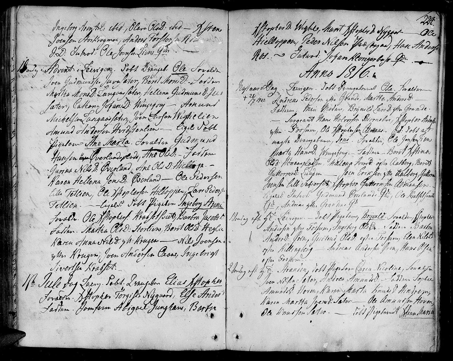 SAT, Ministerialprotokoller, klokkerbøker og fødselsregistre - Nord-Trøndelag, 701/L0004: Ministerialbok nr. 701A04, 1783-1816, s. 224