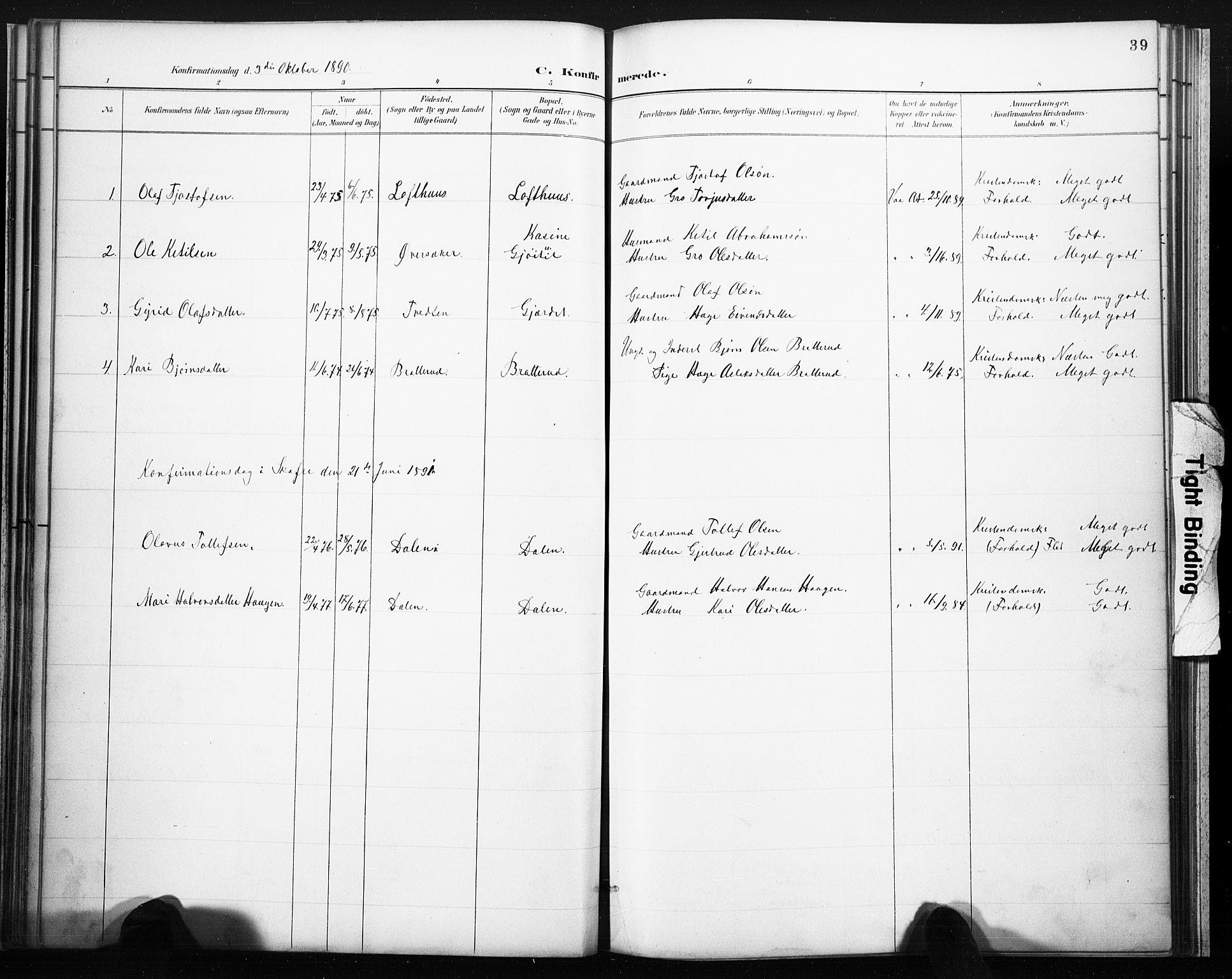 SAKO, Lårdal kirkebøker, F/Fb/L0002: Ministerialbok nr. II 2, 1887-1918, s. 39
