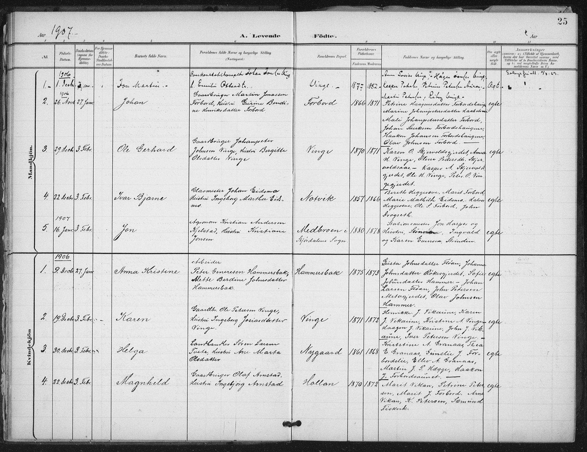 SAT, Ministerialprotokoller, klokkerbøker og fødselsregistre - Nord-Trøndelag, 712/L0101: Ministerialbok nr. 712A02, 1901-1916, s. 25