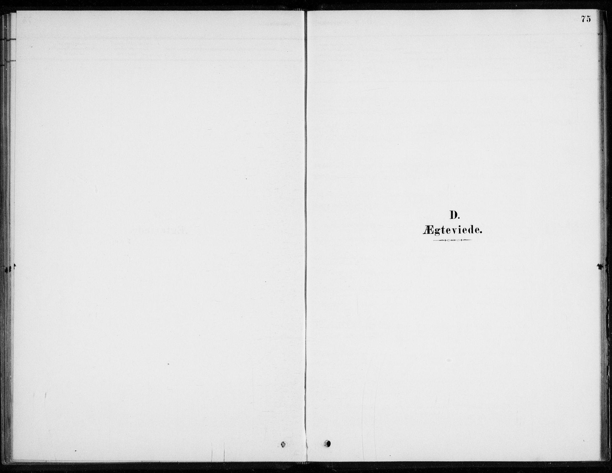 SAKO, Åssiden kirkebøker, F/Fa/L0001: Ministerialbok nr. 1, 1878-1904, s. 75