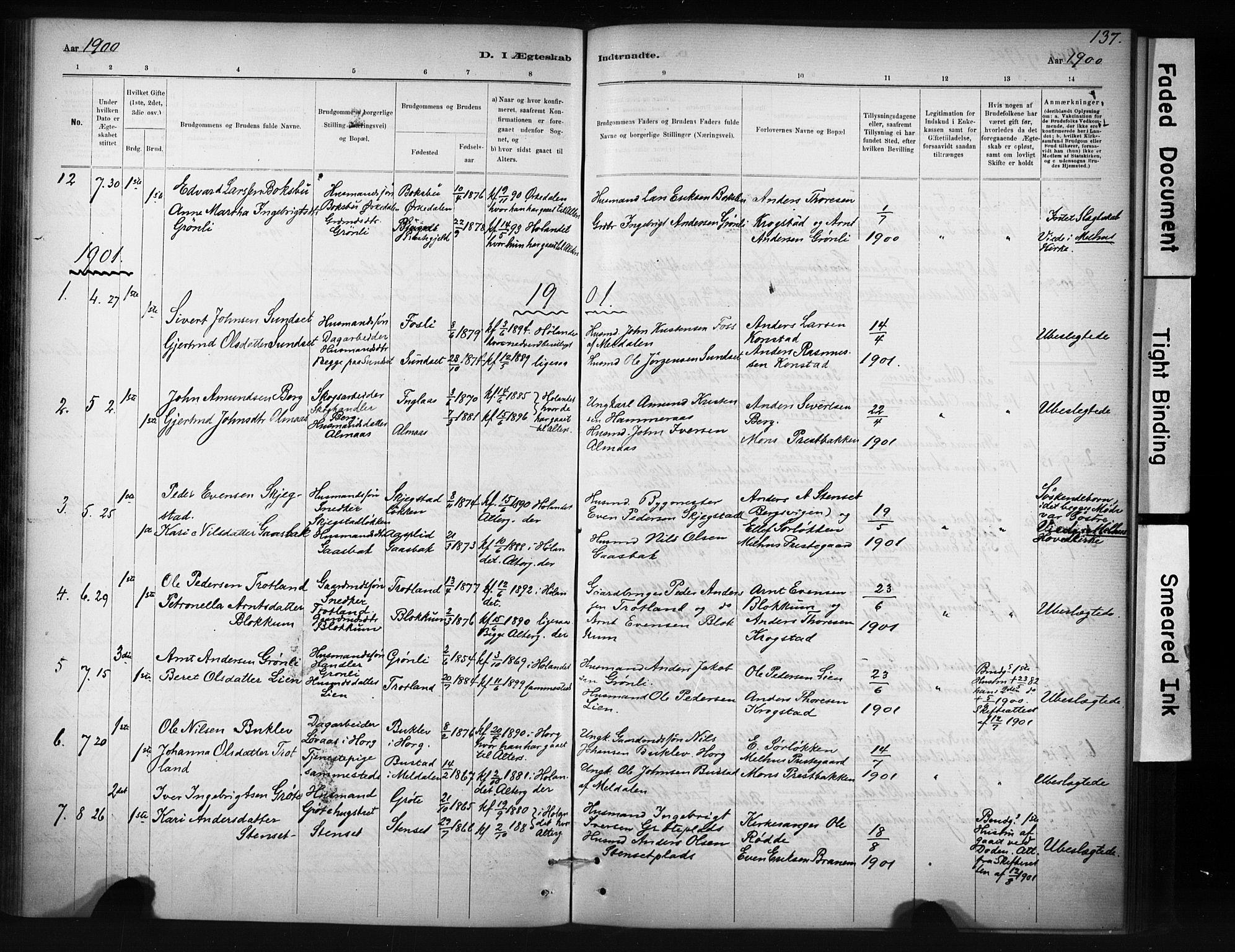 SAT, Ministerialprotokoller, klokkerbøker og fødselsregistre - Sør-Trøndelag, 694/L1127: Ministerialbok nr. 694A01, 1887-1905, s. 137