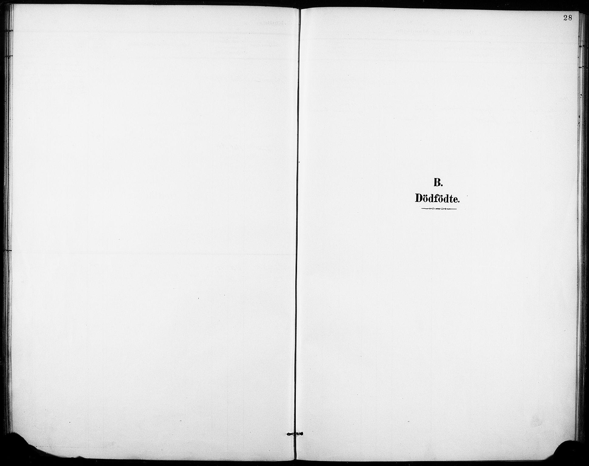 SAKO, Fyresdal kirkebøker, F/Fb/L0003: Ministerialbok nr. II 3, 1887-1903, s. 28