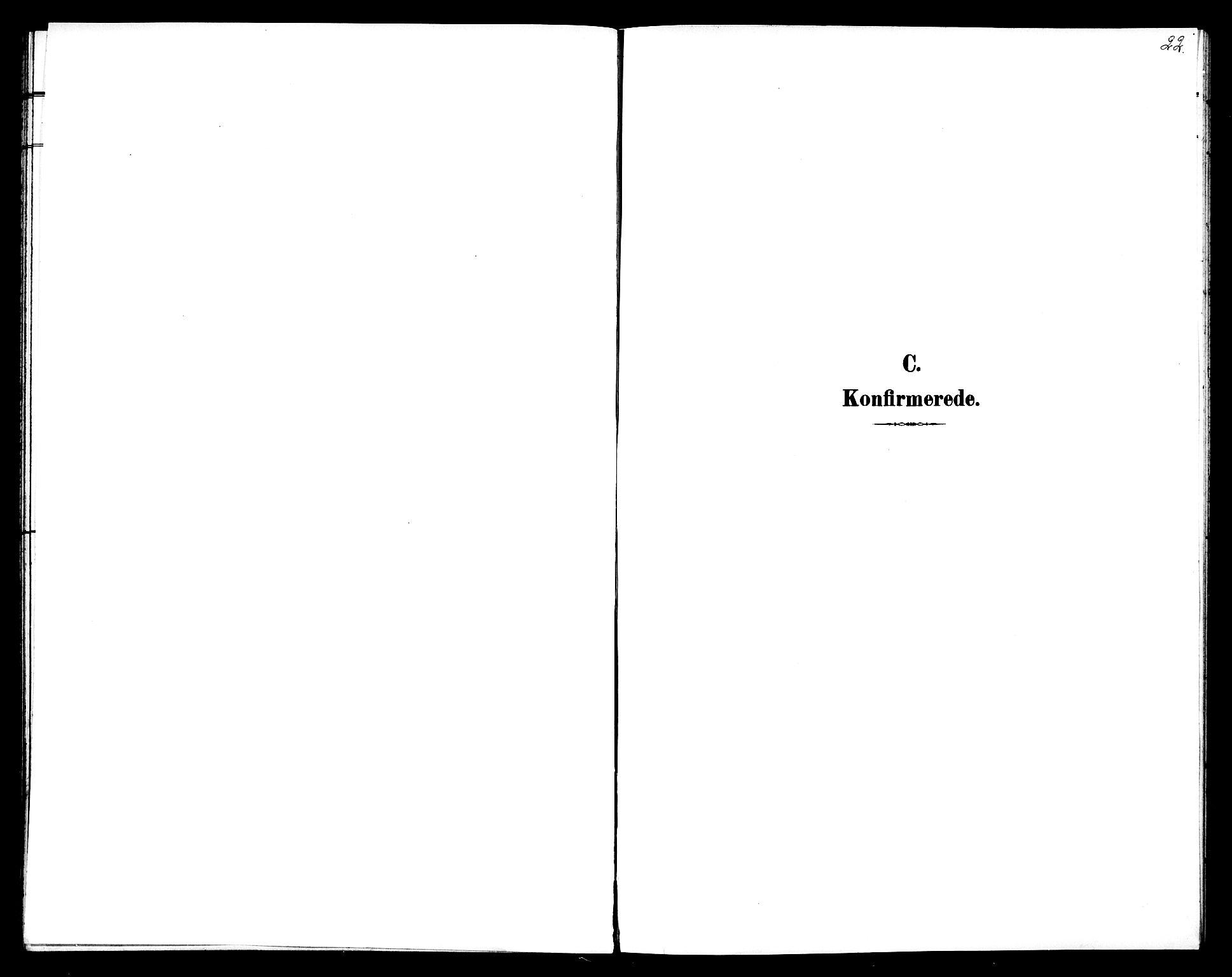 SAT, Ministerialprotokoller, klokkerbøker og fødselsregistre - Sør-Trøndelag, 602/L0144: Klokkerbok nr. 602C12, 1897-1905, s. 22