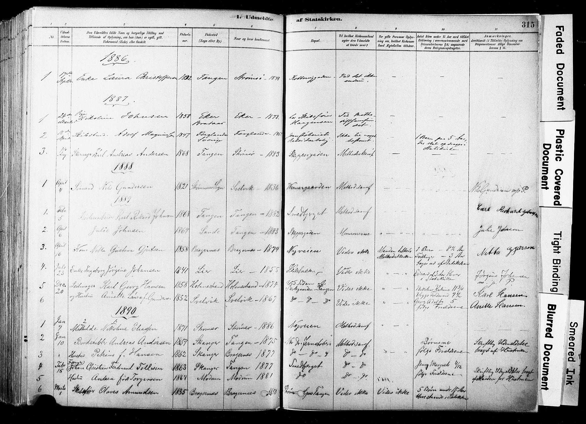 SAKO, Strømsø kirkebøker, F/Fb/L0006: Ministerialbok nr. II 6, 1879-1910, s. 315
