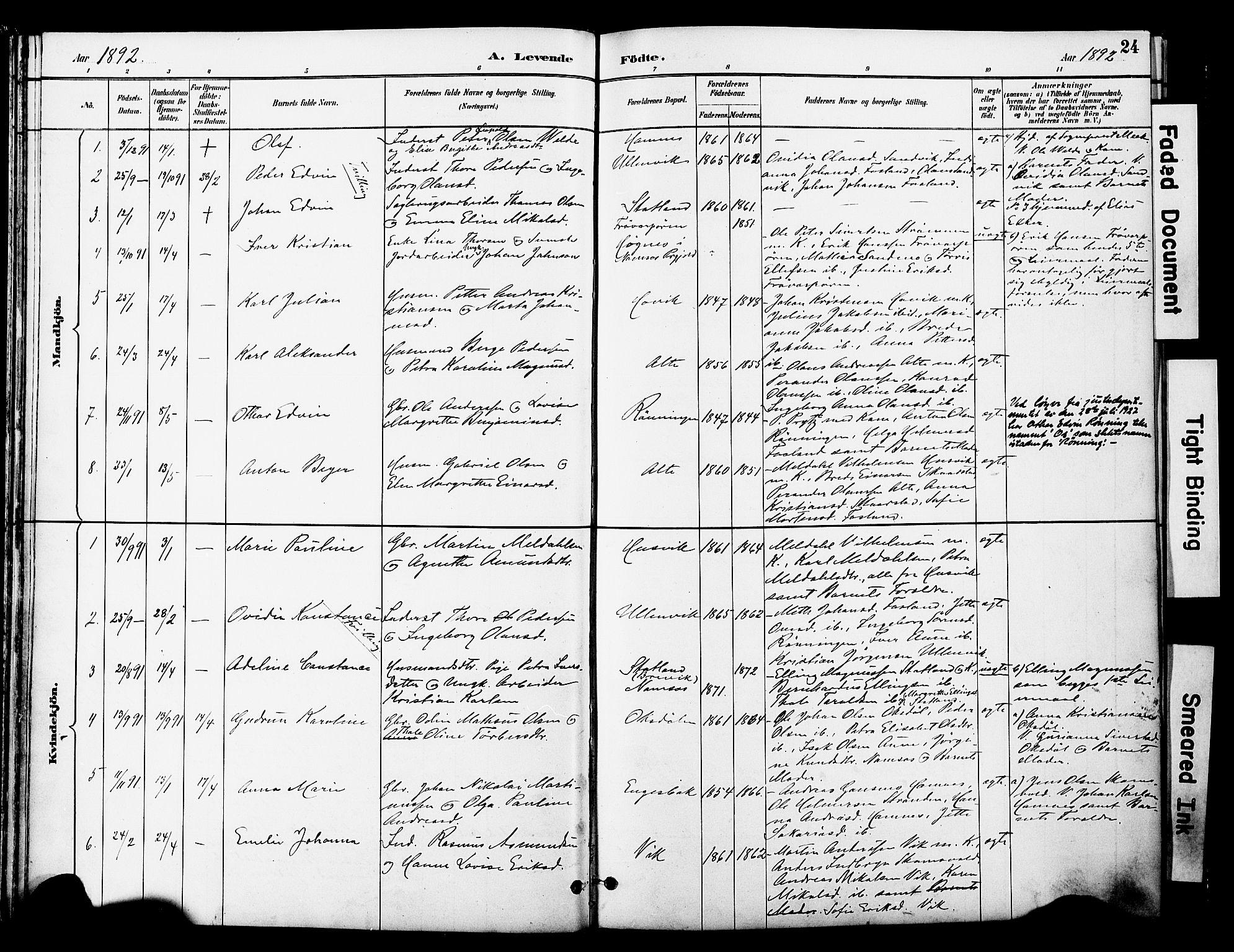 SAT, Ministerialprotokoller, klokkerbøker og fødselsregistre - Nord-Trøndelag, 774/L0628: Ministerialbok nr. 774A02, 1887-1903, s. 24