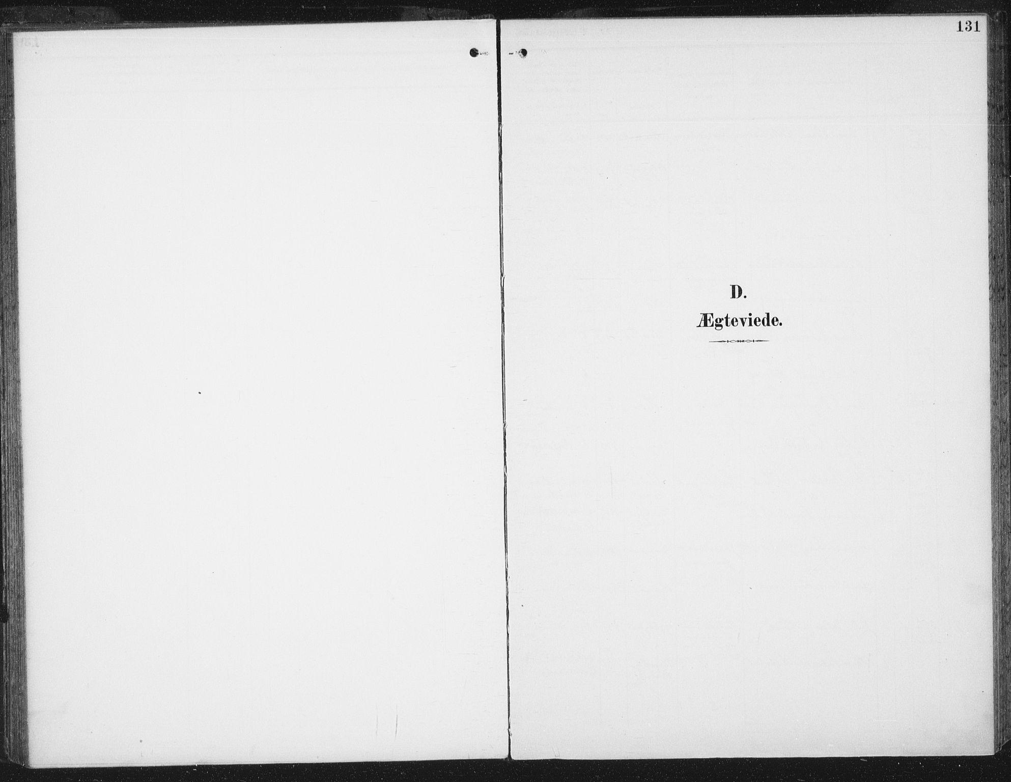 SAT, Ministerialprotokoller, klokkerbøker og fødselsregistre - Sør-Trøndelag, 674/L0872: Ministerialbok nr. 674A04, 1897-1907, s. 131