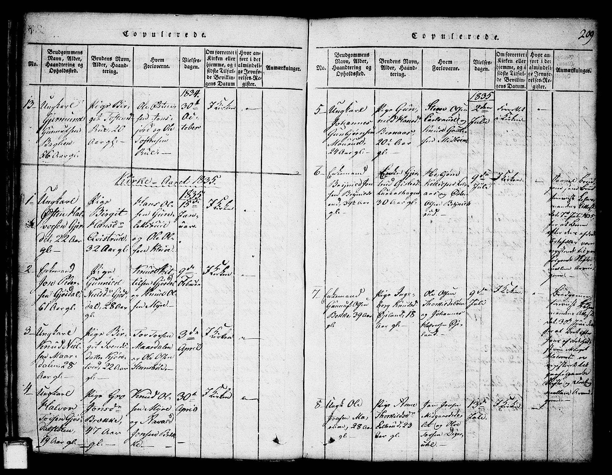SAKO, Tinn kirkebøker, G/Ga/L0001: Klokkerbok nr. I 1, 1815-1850, s. 209