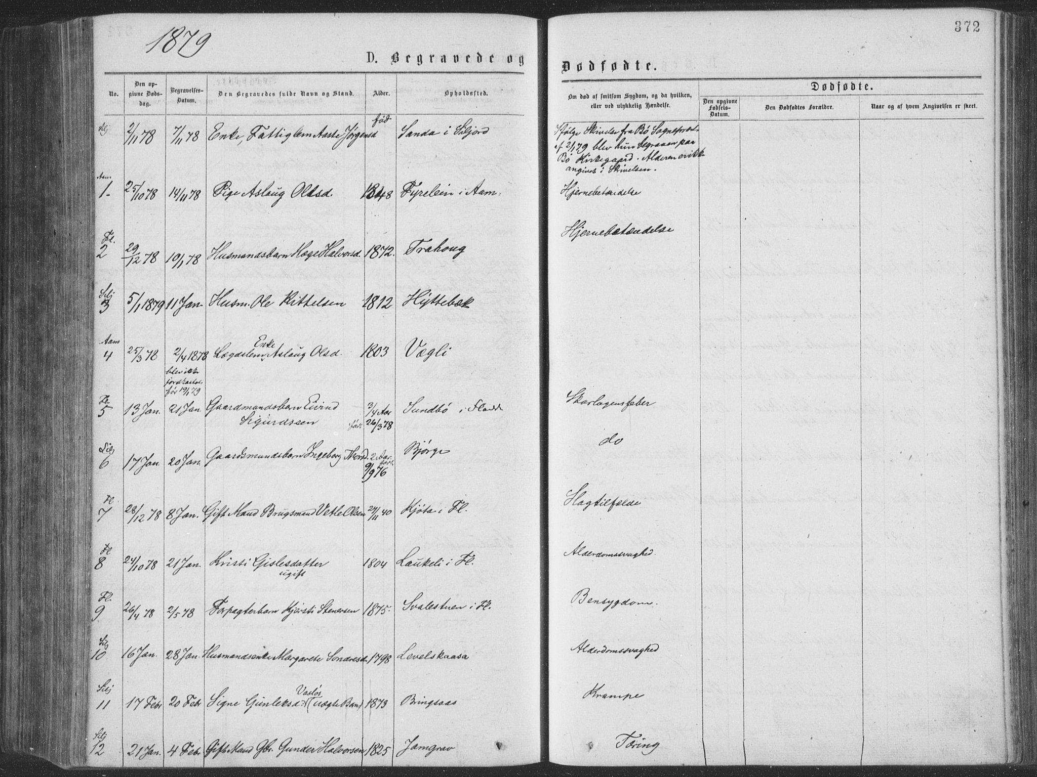 SAKO, Seljord kirkebøker, F/Fa/L0014: Ministerialbok nr. I 14, 1877-1886, s. 372