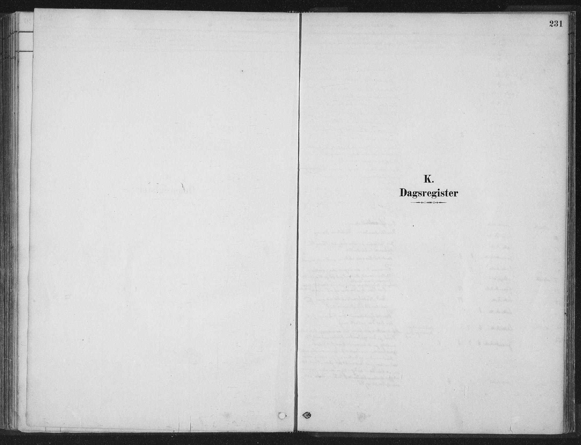SAT, Ministerialprotokoller, klokkerbøker og fødselsregistre - Nord-Trøndelag, 788/L0697: Ministerialbok nr. 788A04, 1878-1902, s. 231