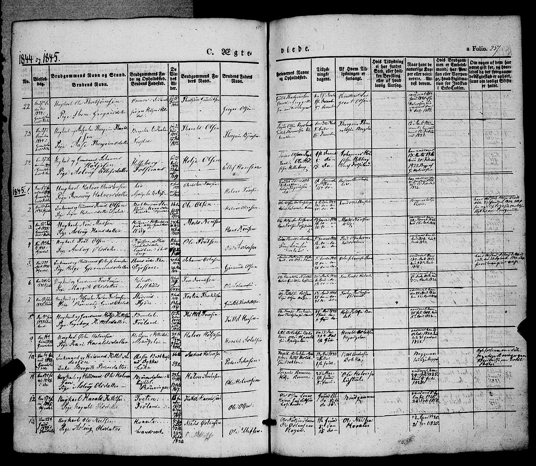 SAKO, Hjartdal kirkebøker, F/Fa/L0008: Ministerialbok nr. I 8, 1844-1859, s. 257