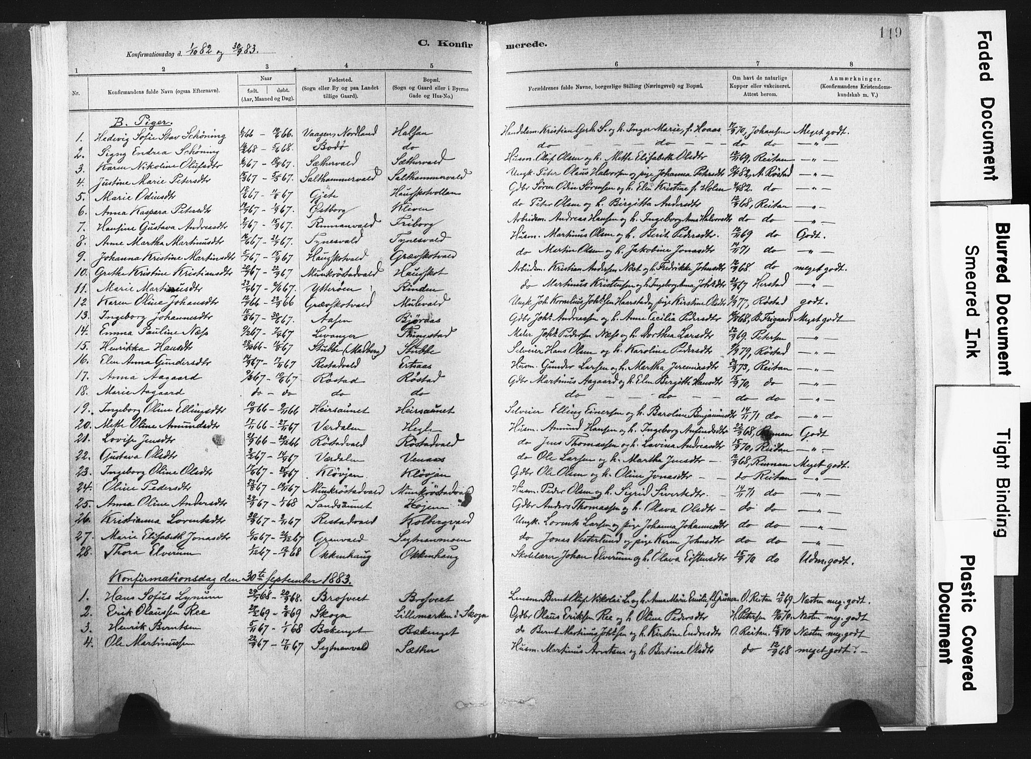 SAT, Ministerialprotokoller, klokkerbøker og fødselsregistre - Nord-Trøndelag, 721/L0207: Ministerialbok nr. 721A02, 1880-1911, s. 119