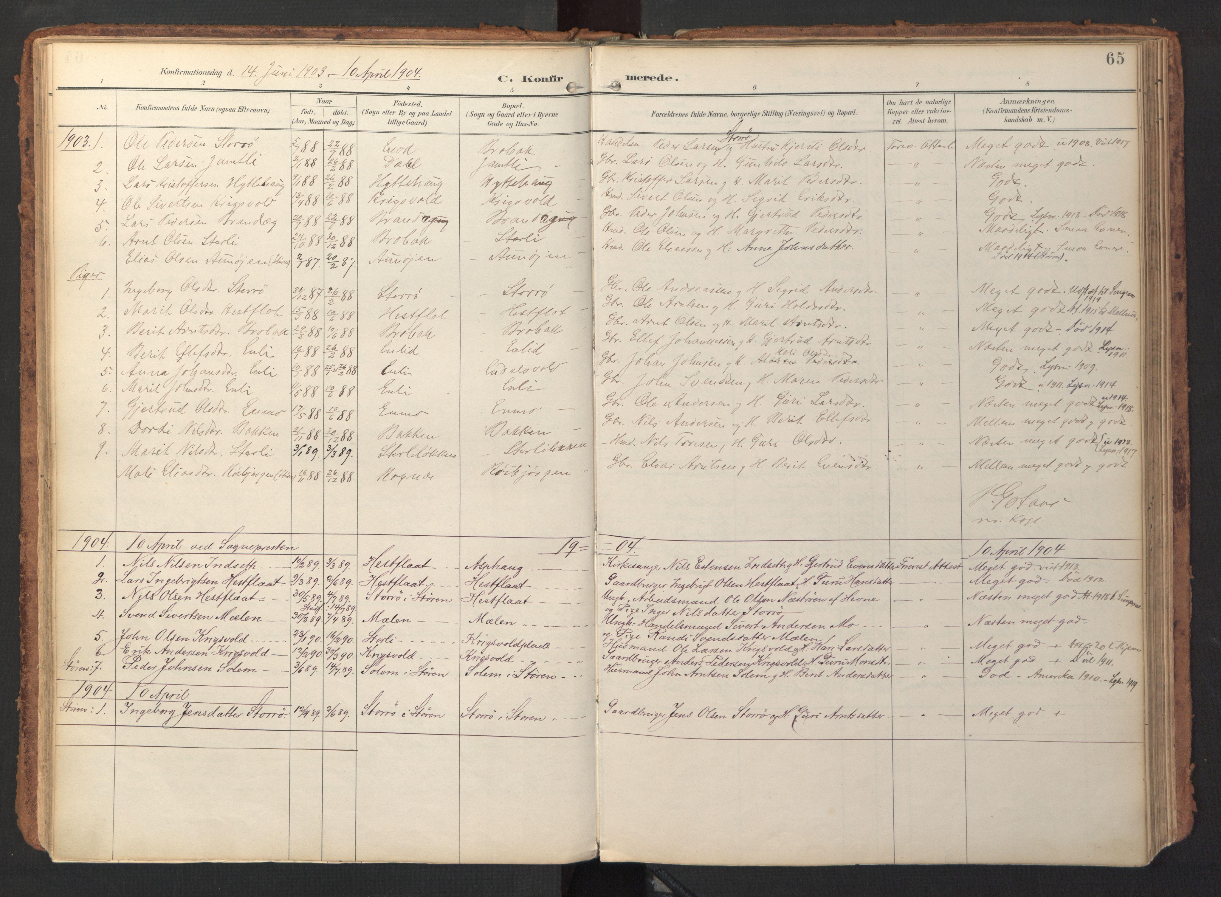 SAT, Ministerialprotokoller, klokkerbøker og fødselsregistre - Sør-Trøndelag, 690/L1050: Ministerialbok nr. 690A01, 1889-1929, s. 65