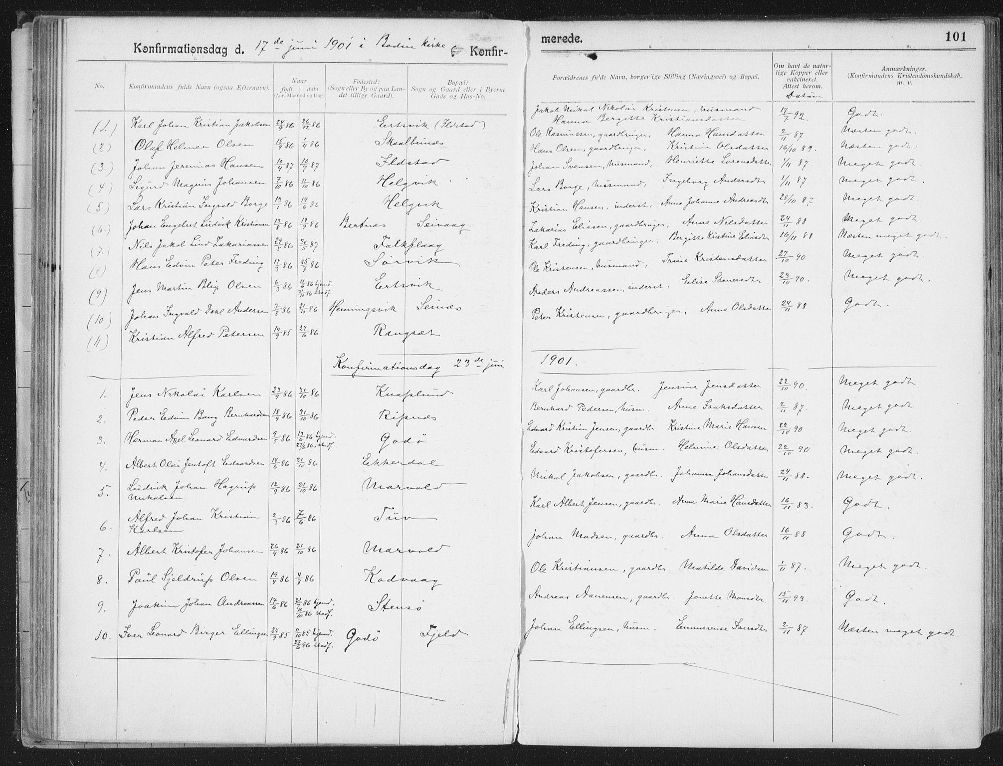 SAT, Ministerialprotokoller, klokkerbøker og fødselsregistre - Nordland, 804/L0081: Ministerialbok nr. 804A02, 1901-1915, s. 101