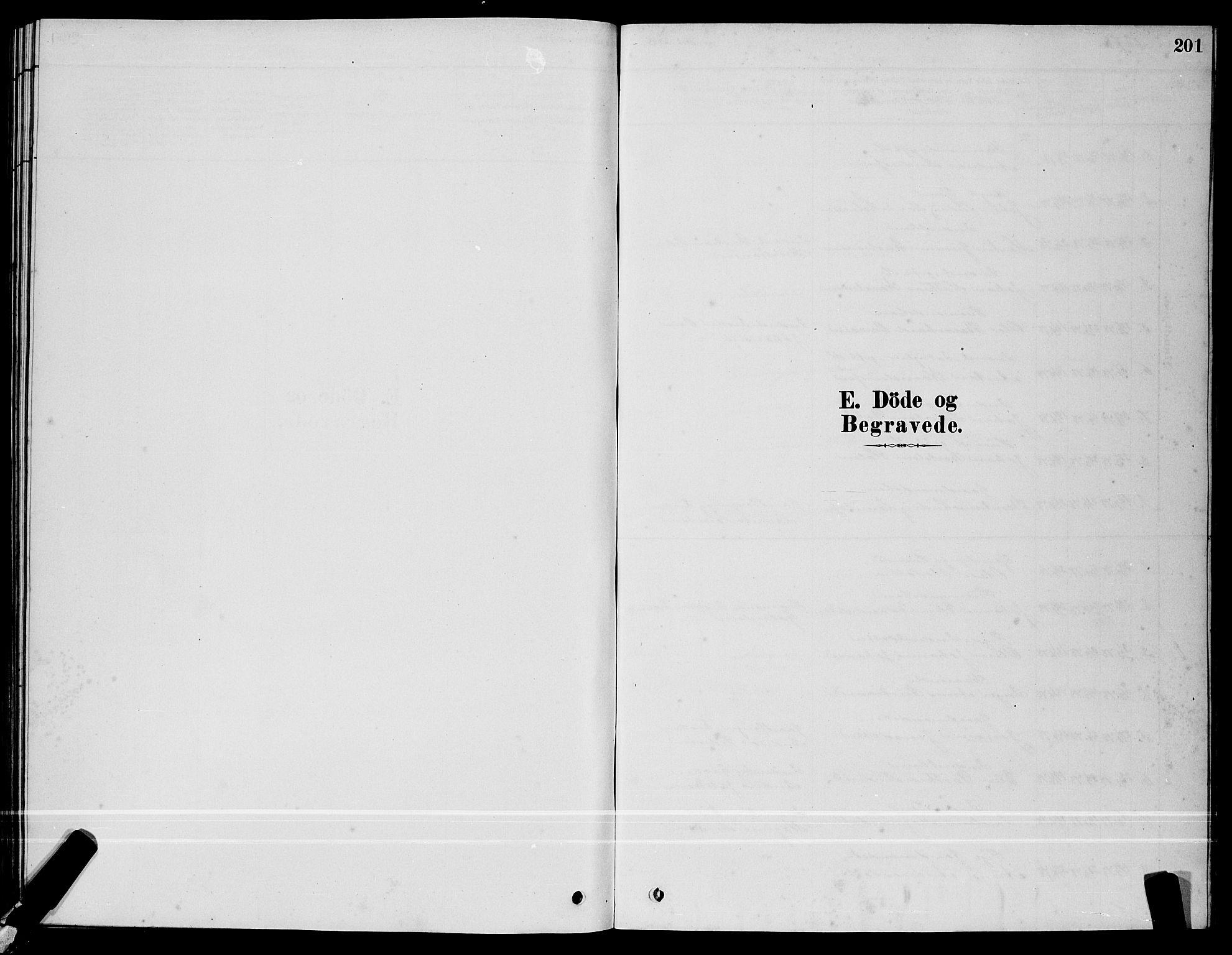 SAT, Ministerialprotokoller, klokkerbøker og fødselsregistre - Sør-Trøndelag, 640/L0585: Klokkerbok nr. 640C03, 1878-1891, s. 201