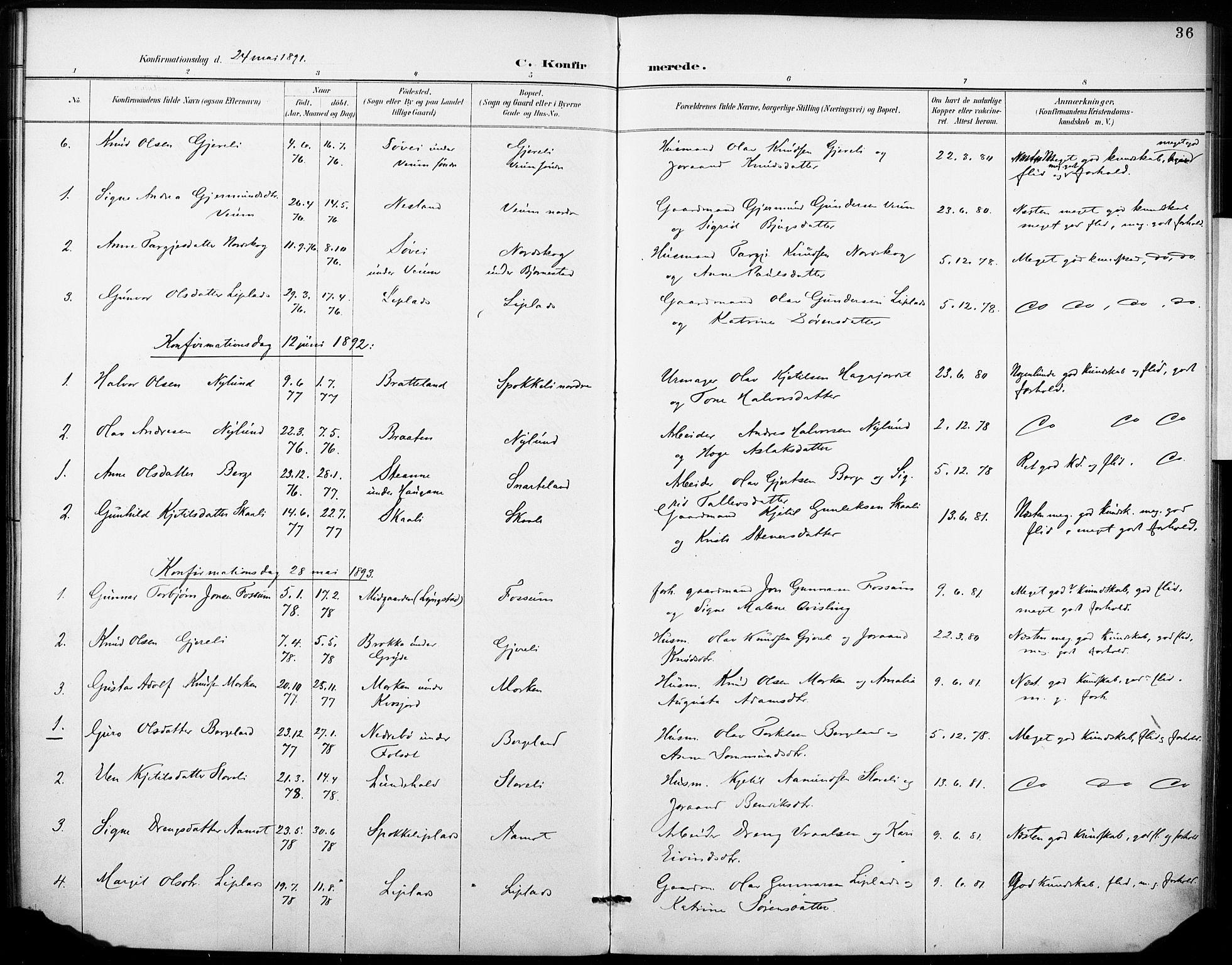 SAKO, Fyresdal kirkebøker, F/Fb/L0003: Ministerialbok nr. II 3, 1887-1903, s. 36