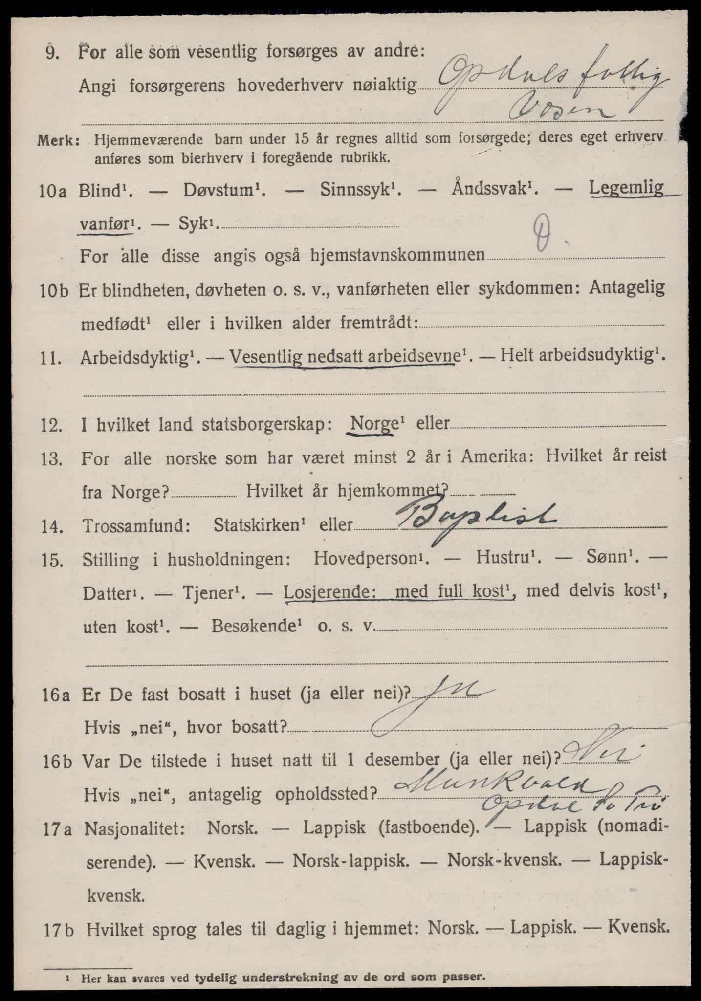 SAT, Folketelling 1920 for 1634 Oppdal herred, 1920, s. 10176