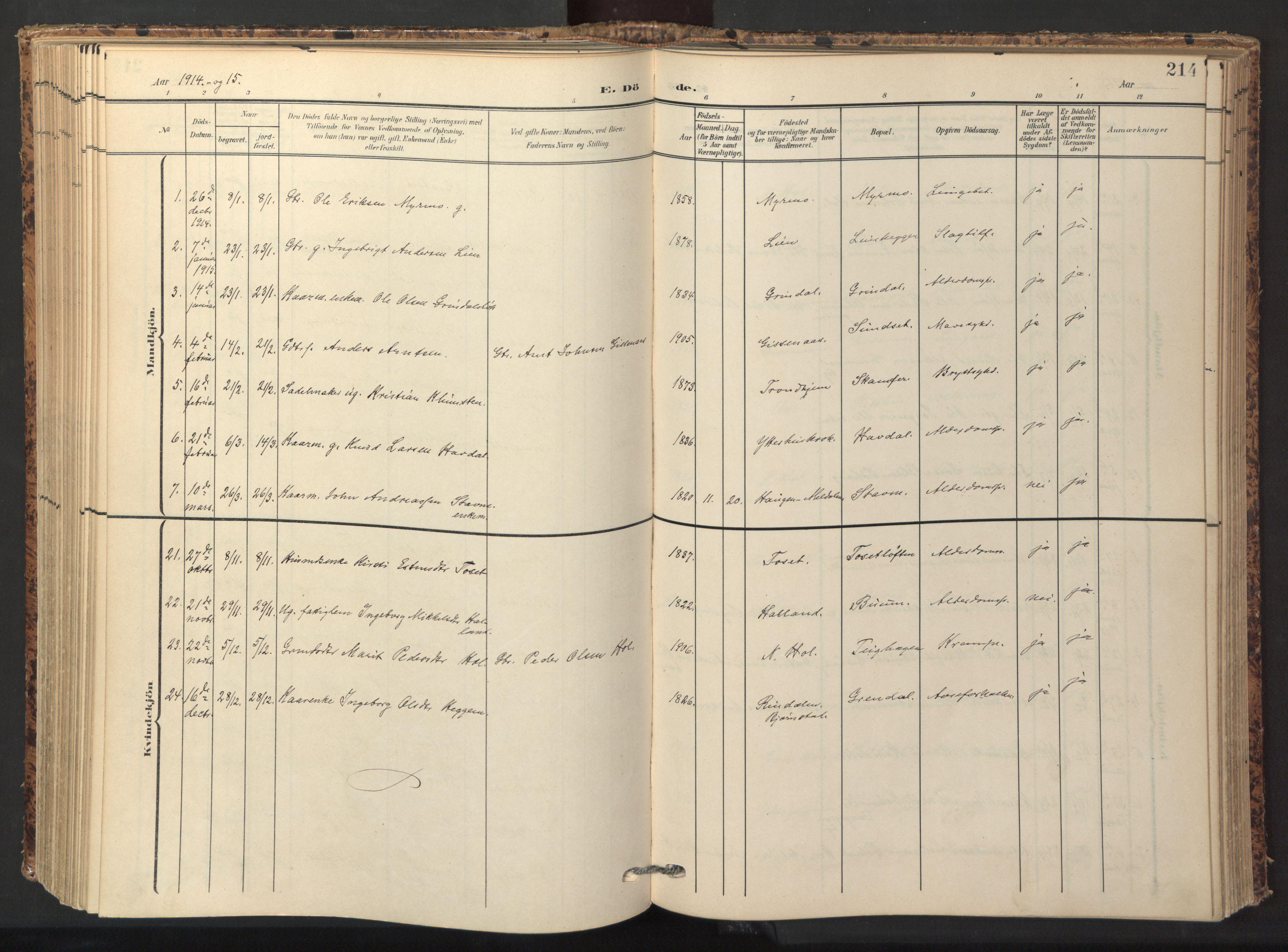 SAT, Ministerialprotokoller, klokkerbøker og fødselsregistre - Sør-Trøndelag, 674/L0873: Ministerialbok nr. 674A05, 1908-1923, s. 214