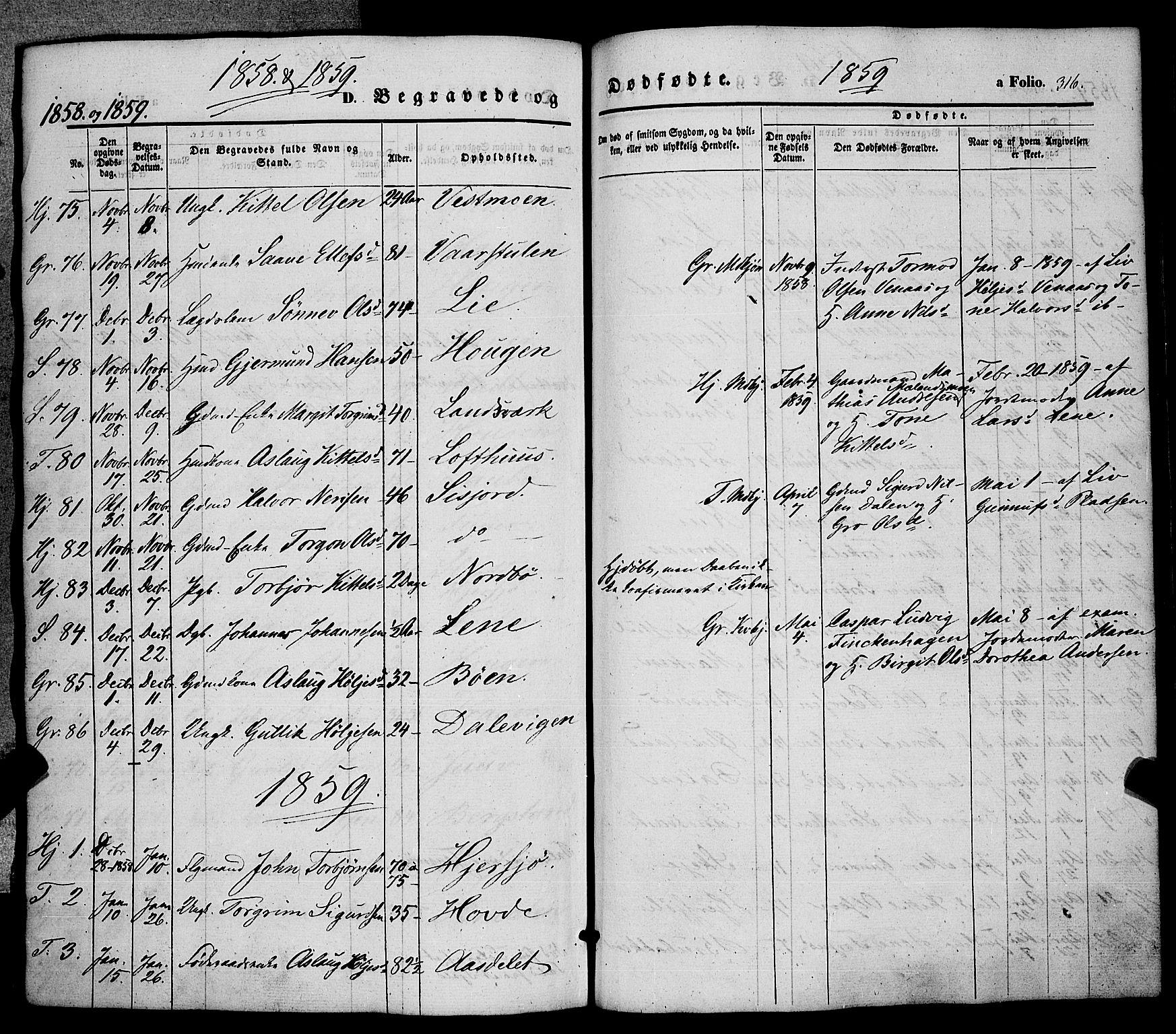 SAKO, Hjartdal kirkebøker, F/Fa/L0008: Ministerialbok nr. I 8, 1844-1859, s. 316