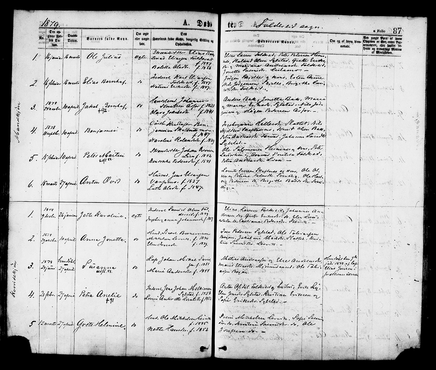 SAT, Ministerialprotokoller, klokkerbøker og fødselsregistre - Nord-Trøndelag, 780/L0642: Ministerialbok nr. 780A07 /2, 1878-1885, s. 87
