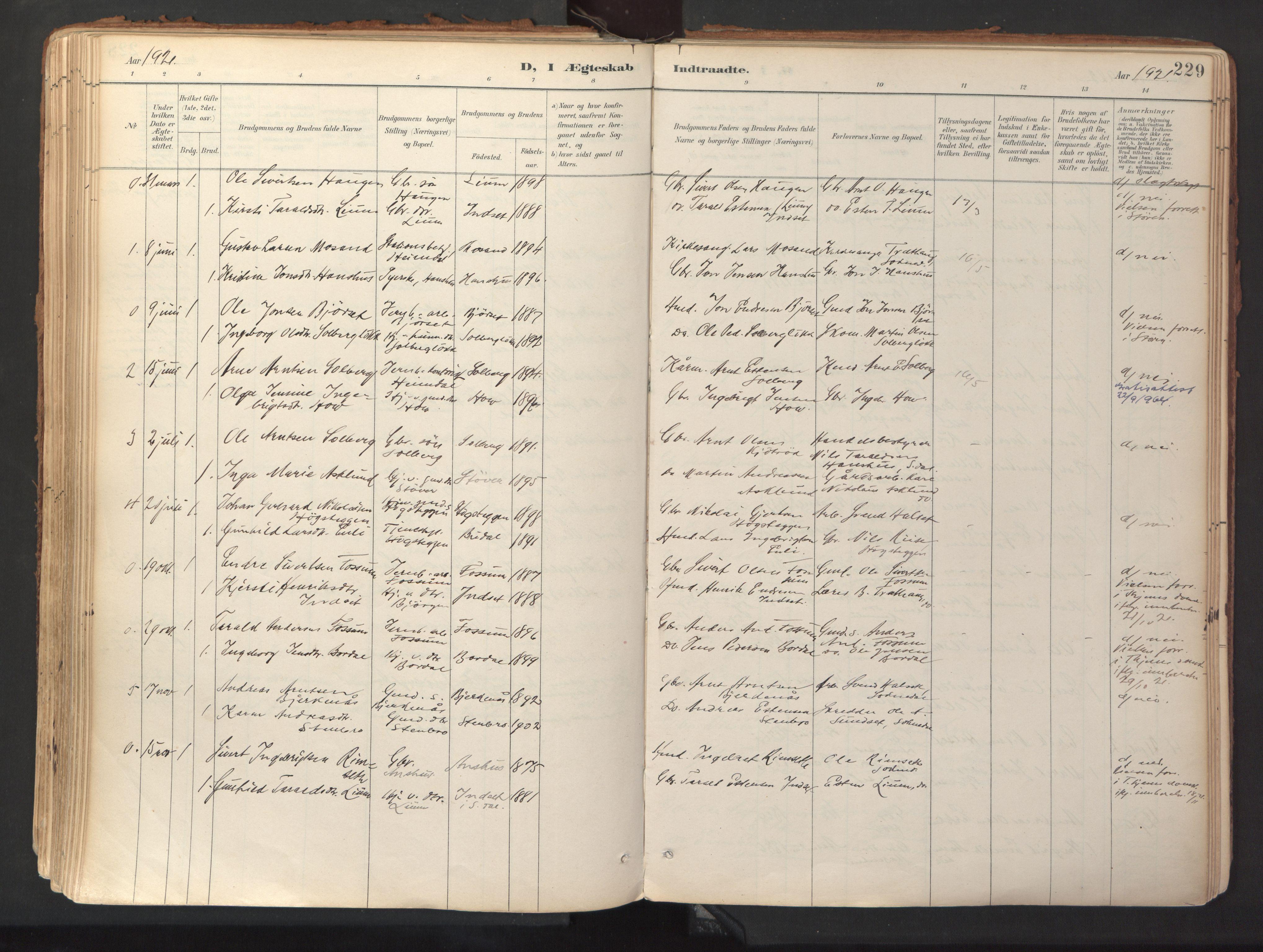 SAT, Ministerialprotokoller, klokkerbøker og fødselsregistre - Sør-Trøndelag, 689/L1041: Ministerialbok nr. 689A06, 1891-1923, s. 229