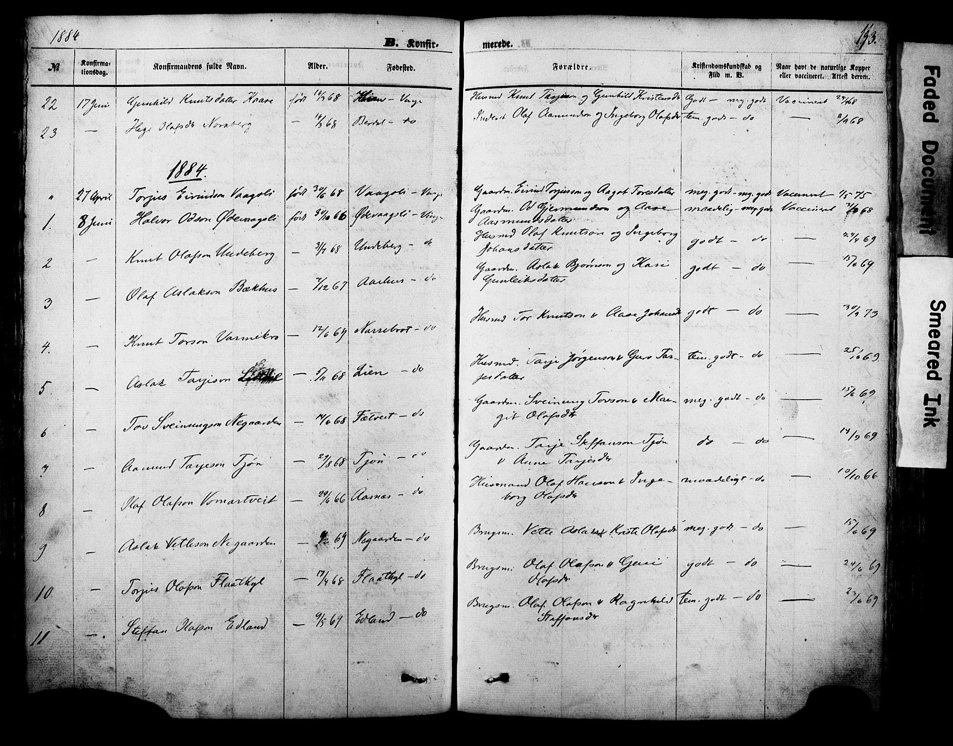SAKO, Vinje kirkebøker, F/Fa/L0005: Ministerialbok nr. I 5, 1870-1886, s. 193