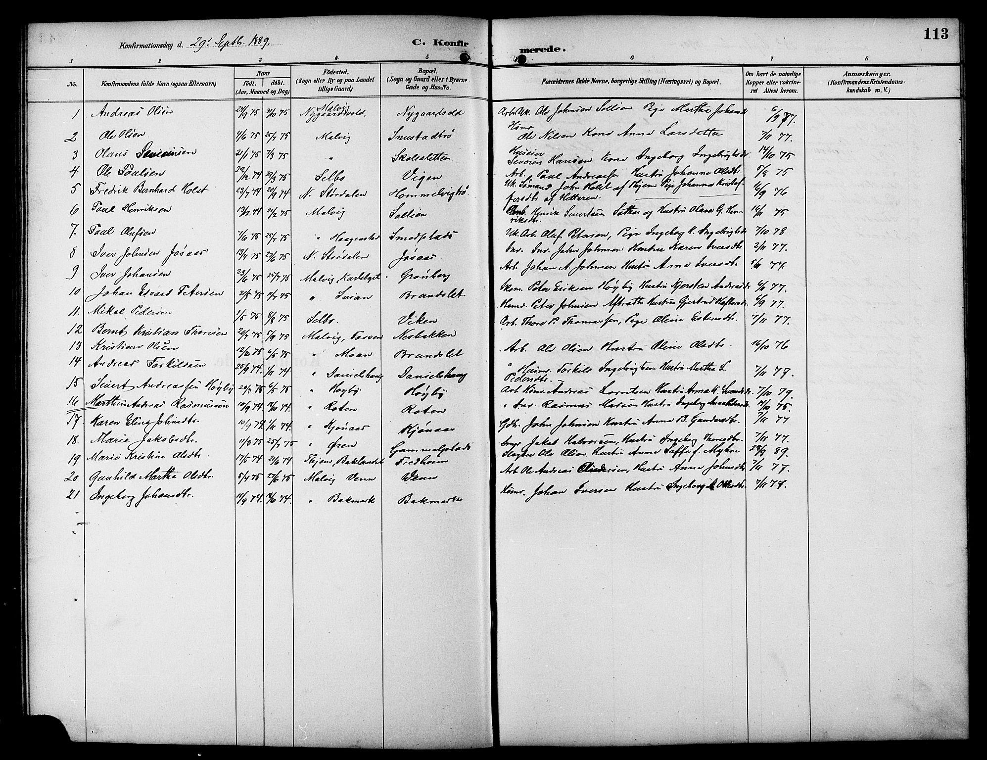 SAT, Ministerialprotokoller, klokkerbøker og fødselsregistre - Sør-Trøndelag, 617/L0431: Klokkerbok nr. 617C01, 1889-1910, s. 113