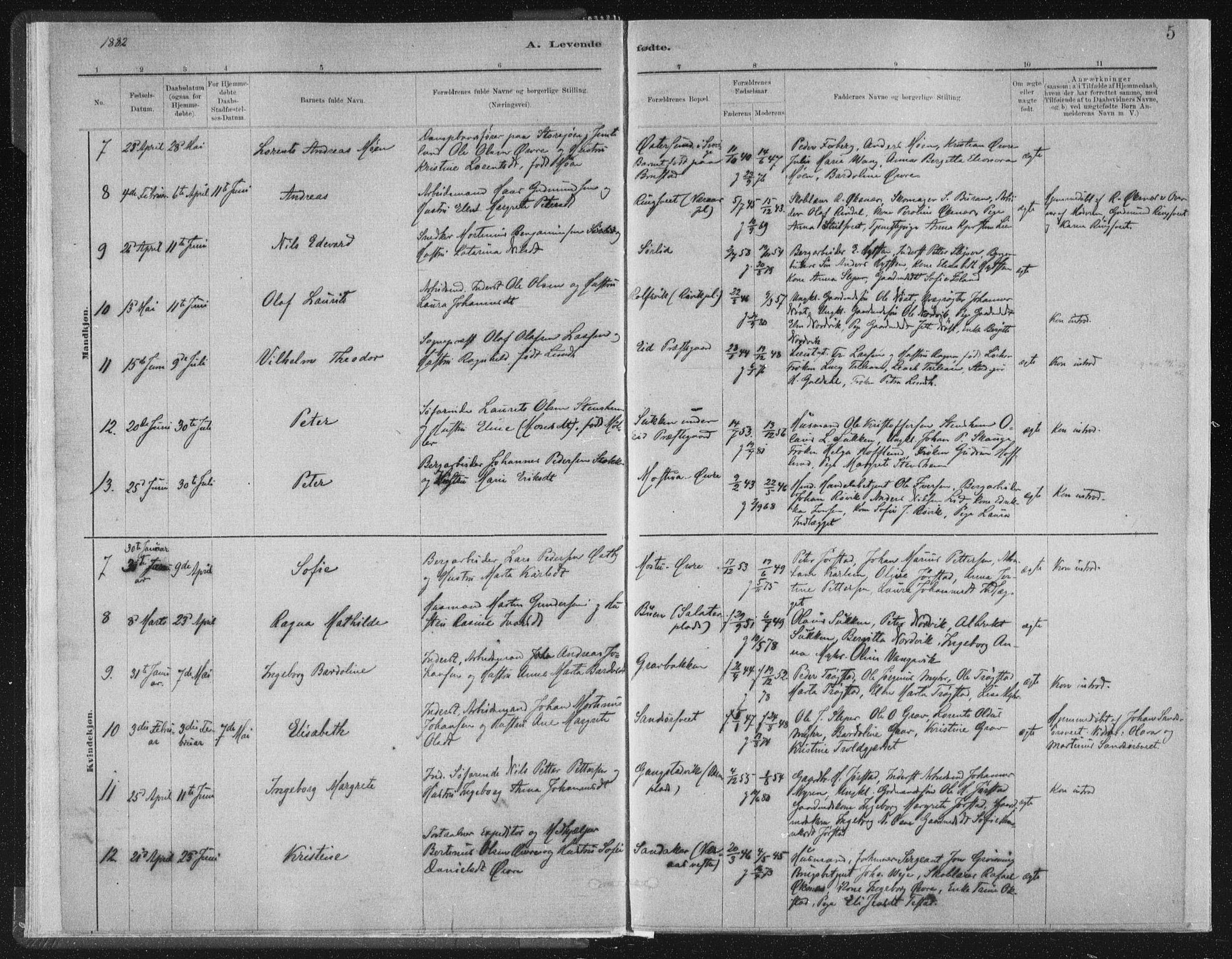 SAT, Ministerialprotokoller, klokkerbøker og fødselsregistre - Nord-Trøndelag, 722/L0220: Ministerialbok nr. 722A07, 1881-1908, s. 5