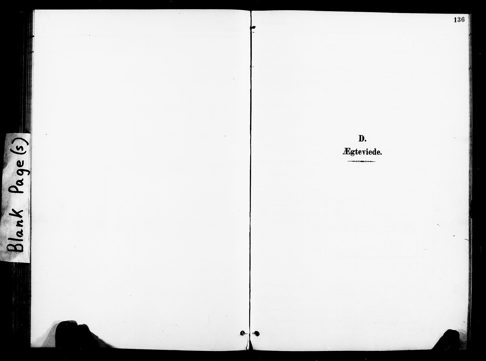 SAT, Ministerialprotokoller, klokkerbøker og fødselsregistre - Nord-Trøndelag, 739/L0372: Ministerialbok nr. 739A04, 1895-1903, s. 136