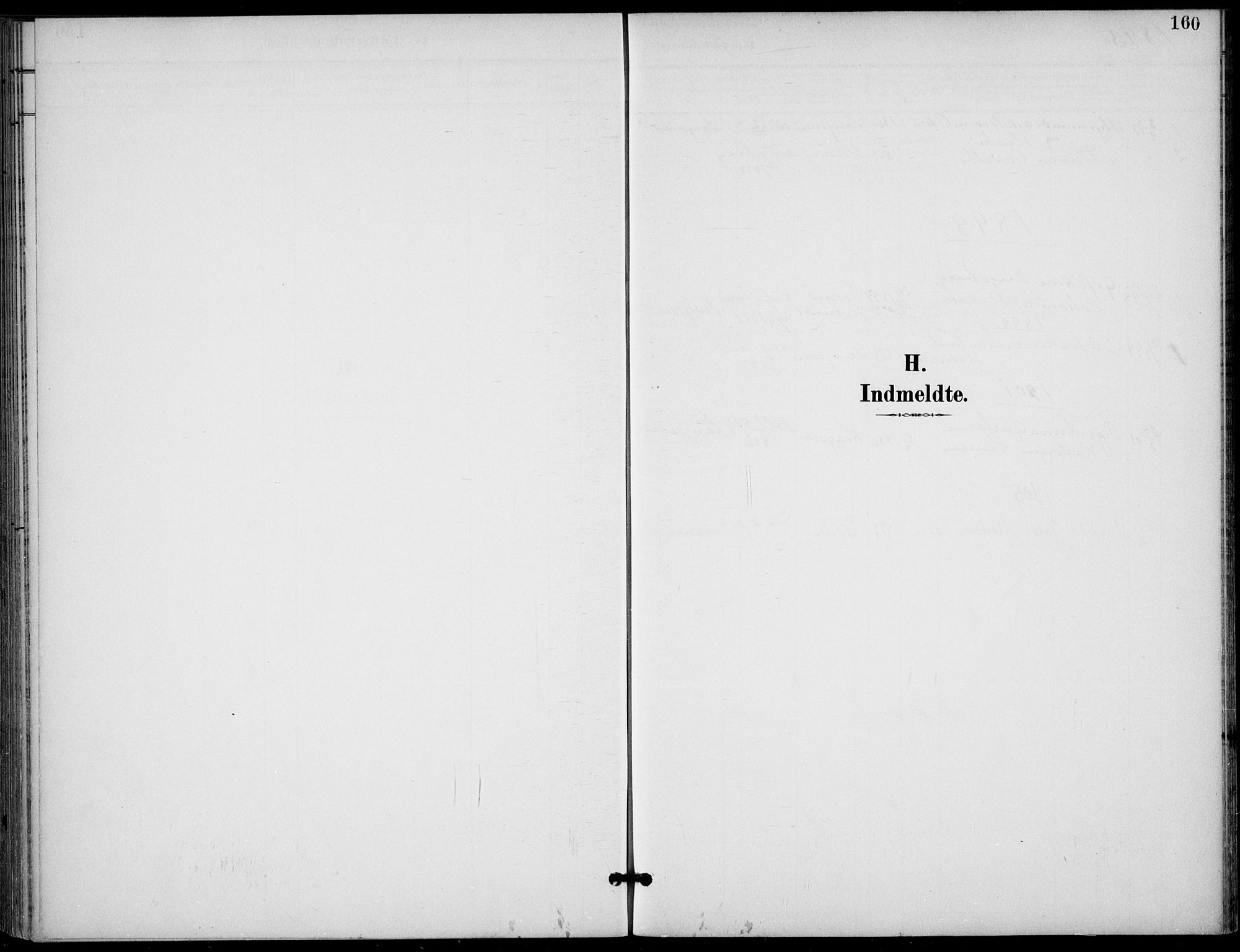 SAKO, Langesund kirkebøker, F/Fa/L0003: Ministerialbok nr. 3, 1893-1907, s. 160