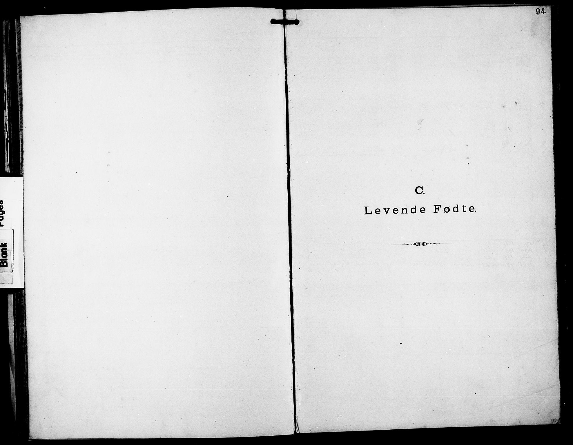 SAST, Stavanger amt*, Dissenterprotokoll nr. -, 1892-1902, s. 94
