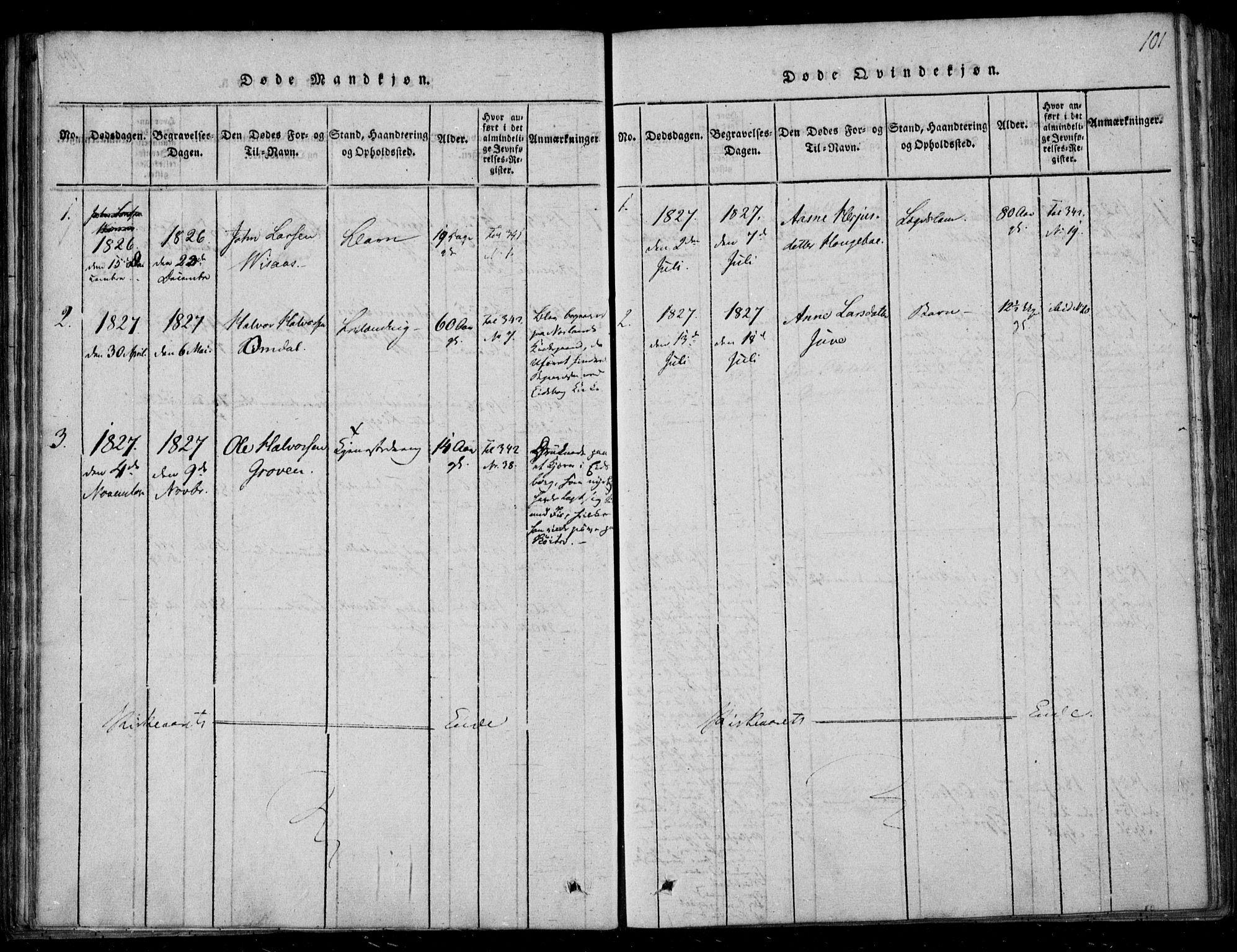 SAKO, Lårdal kirkebøker, F/Fb/L0001: Ministerialbok nr. II 1, 1815-1860, s. 101