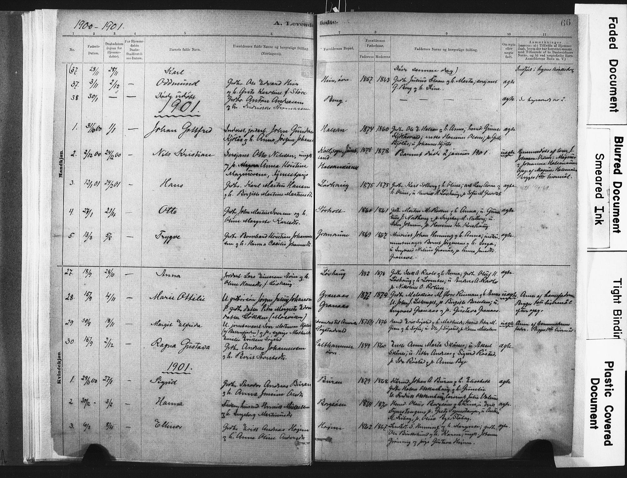 SAT, Ministerialprotokoller, klokkerbøker og fødselsregistre - Nord-Trøndelag, 721/L0207: Ministerialbok nr. 721A02, 1880-1911, s. 66