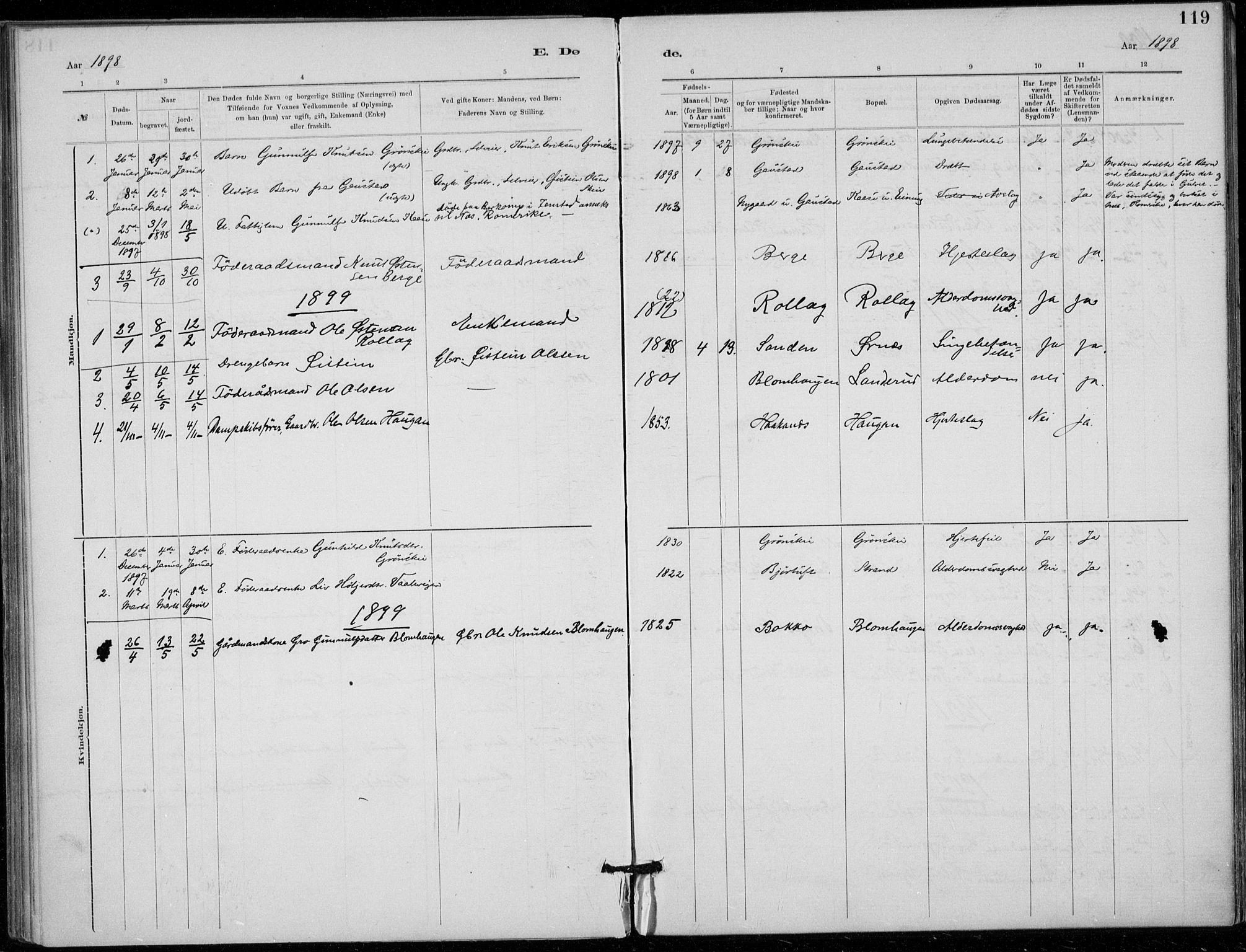 SAKO, Tinn kirkebøker, F/Fb/L0002: Ministerialbok nr. II 2, 1878-1917, s. 119