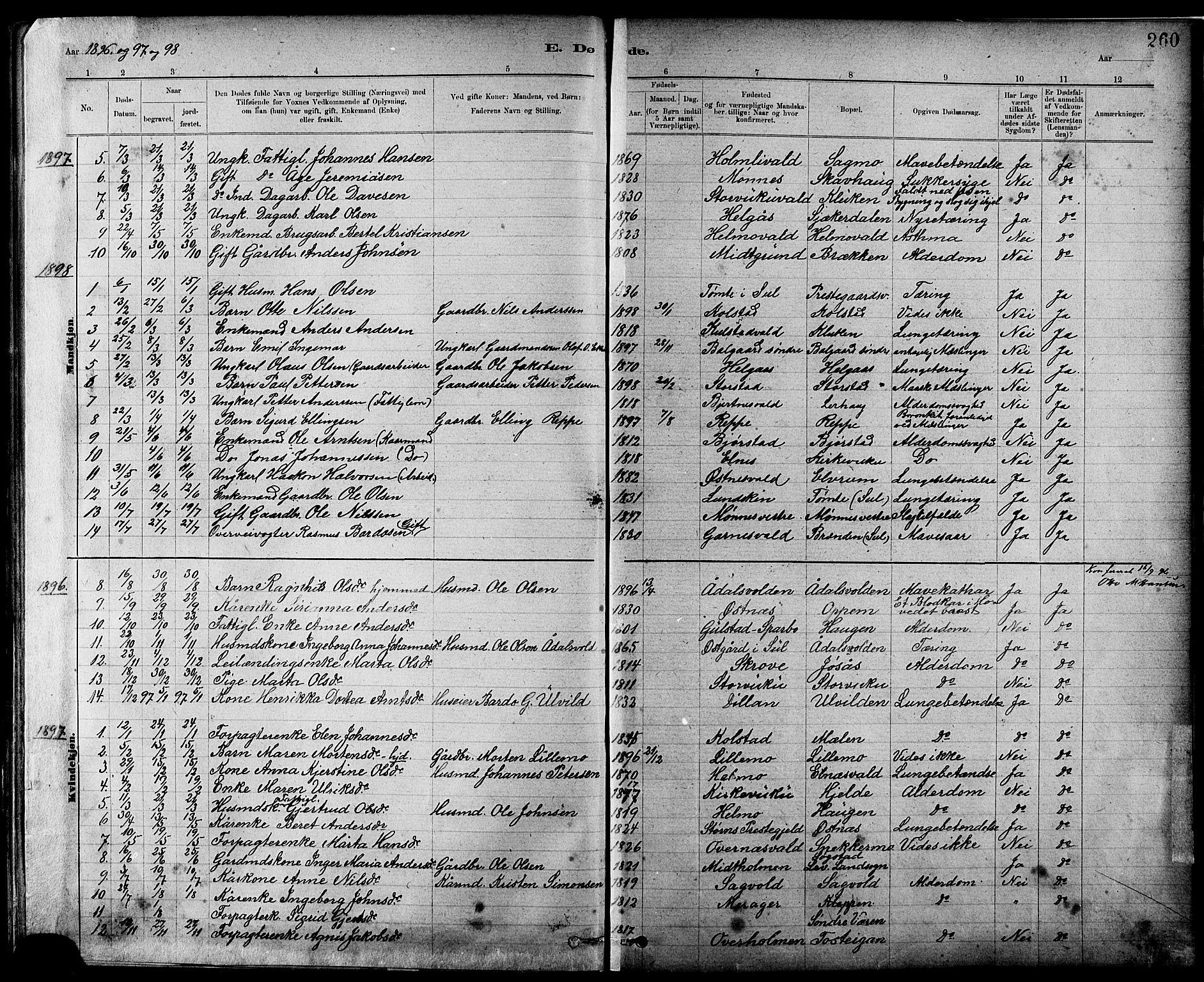 SAT, Ministerialprotokoller, klokkerbøker og fødselsregistre - Nord-Trøndelag, 724/L0267: Klokkerbok nr. 724C03, 1879-1898, s. 260