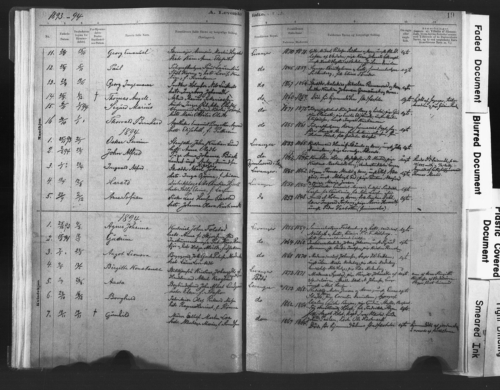 SAT, Ministerialprotokoller, klokkerbøker og fødselsregistre - Nord-Trøndelag, 720/L0189: Ministerialbok nr. 720A05, 1880-1911, s. 19