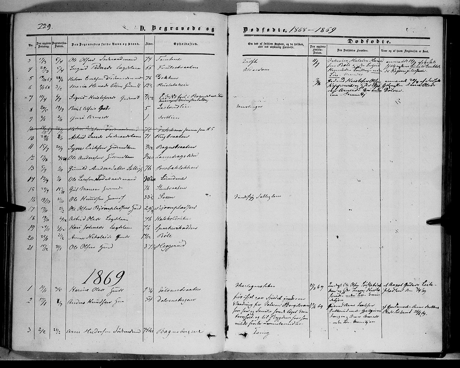 SAH, Sør-Aurdal prestekontor, Ministerialbok nr. 5, 1849-1876, s. 229