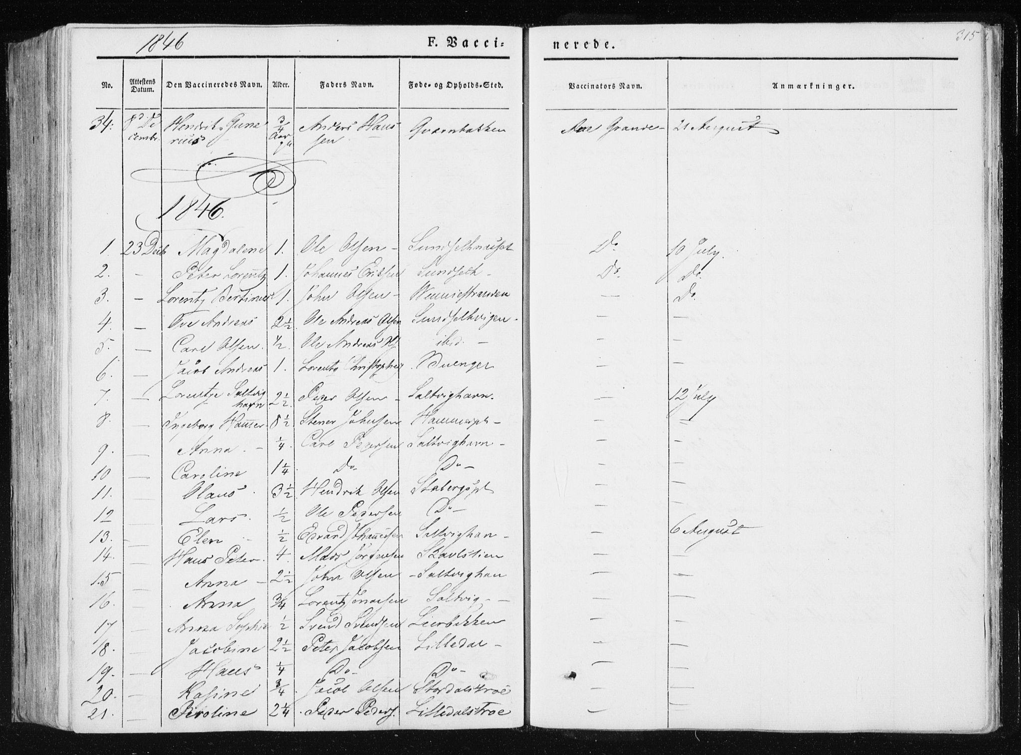 SAT, Ministerialprotokoller, klokkerbøker og fødselsregistre - Nord-Trøndelag, 733/L0323: Ministerialbok nr. 733A02, 1843-1870, s. 315