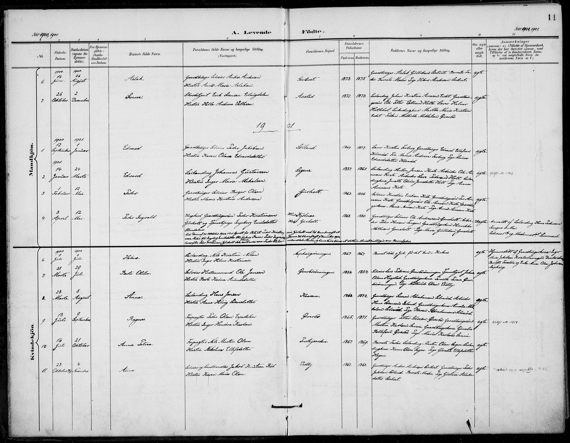 SAKO, Siljan kirkebøker, F/Fa/L0003: Ministerialbok nr. 3, 1896-1910, s. 11