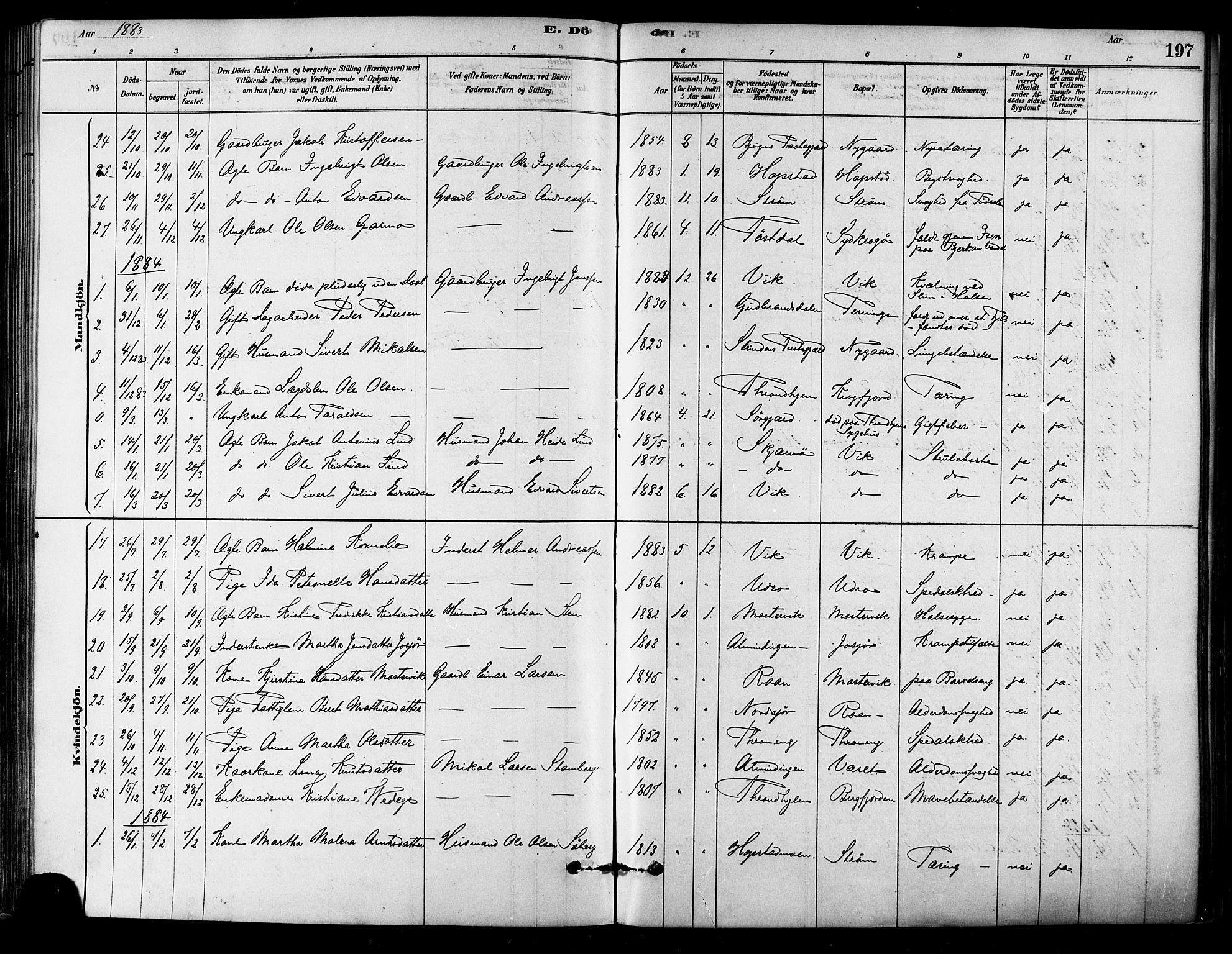 SAT, Ministerialprotokoller, klokkerbøker og fødselsregistre - Sør-Trøndelag, 657/L0707: Ministerialbok nr. 657A08, 1879-1893, s. 197