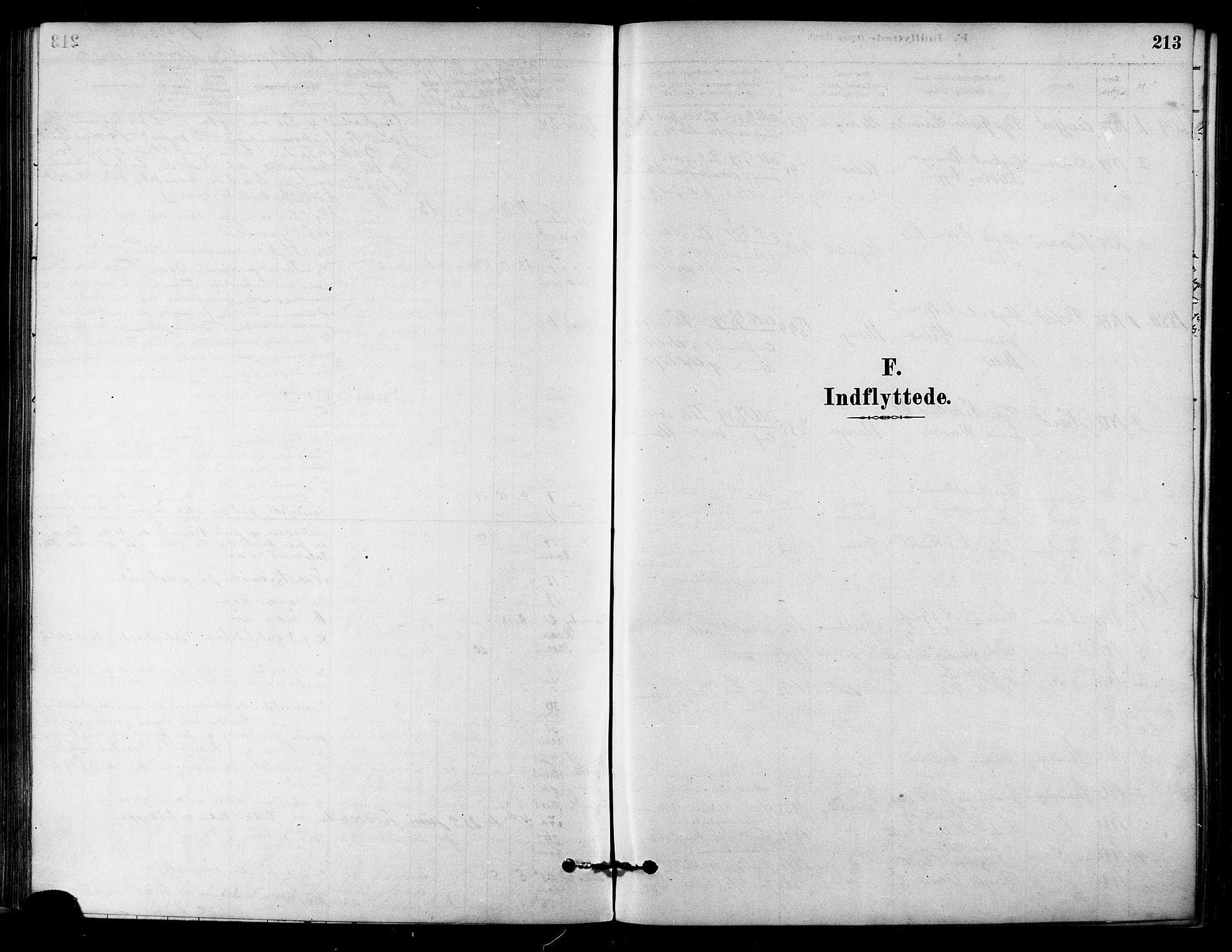 SAT, Ministerialprotokoller, klokkerbøker og fødselsregistre - Sør-Trøndelag, 657/L0707: Ministerialbok nr. 657A08, 1879-1893, s. 213