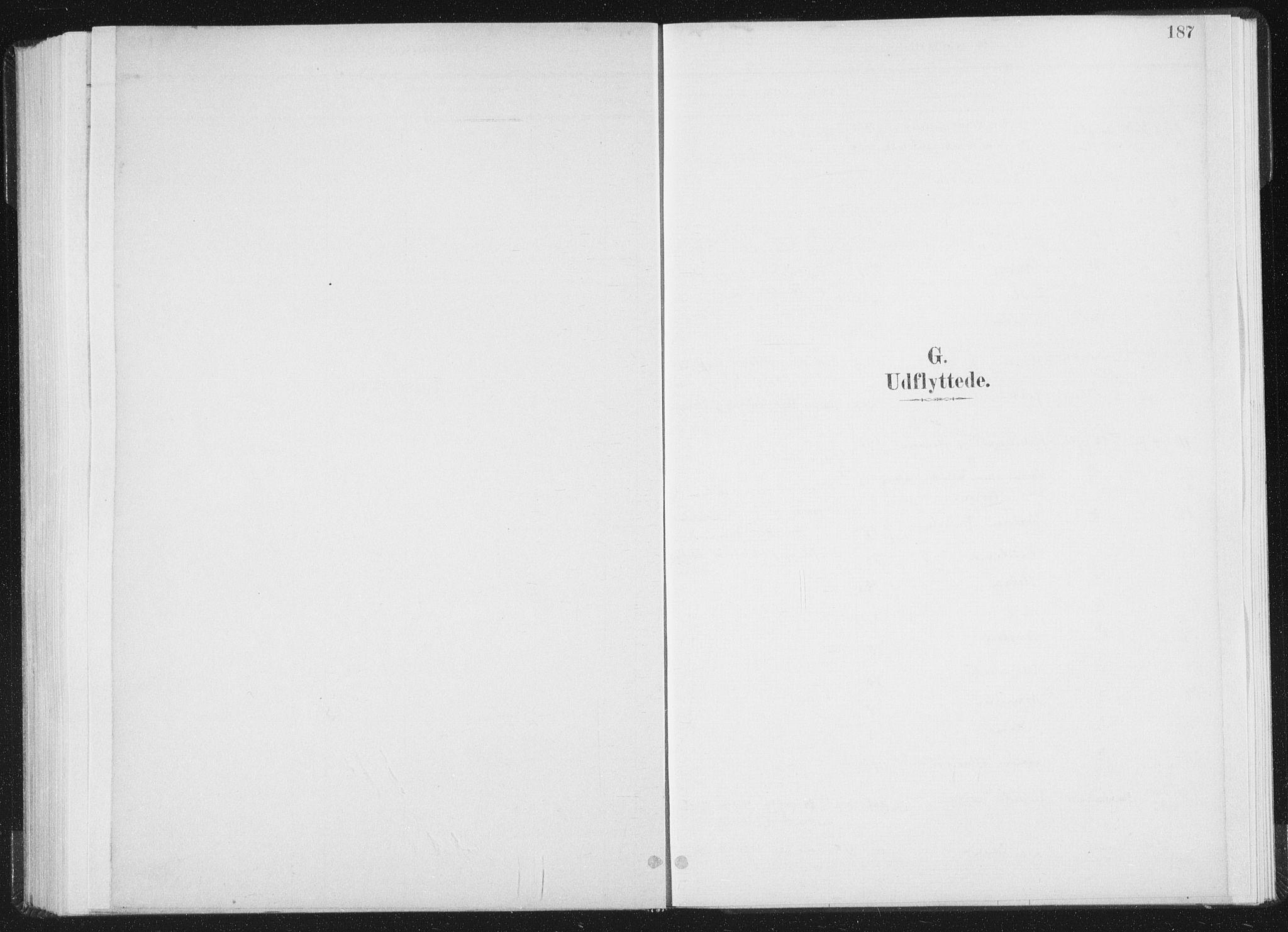 SAT, Ministerialprotokoller, klokkerbøker og fødselsregistre - Nord-Trøndelag, 771/L0597: Ministerialbok nr. 771A04, 1885-1910, s. 187