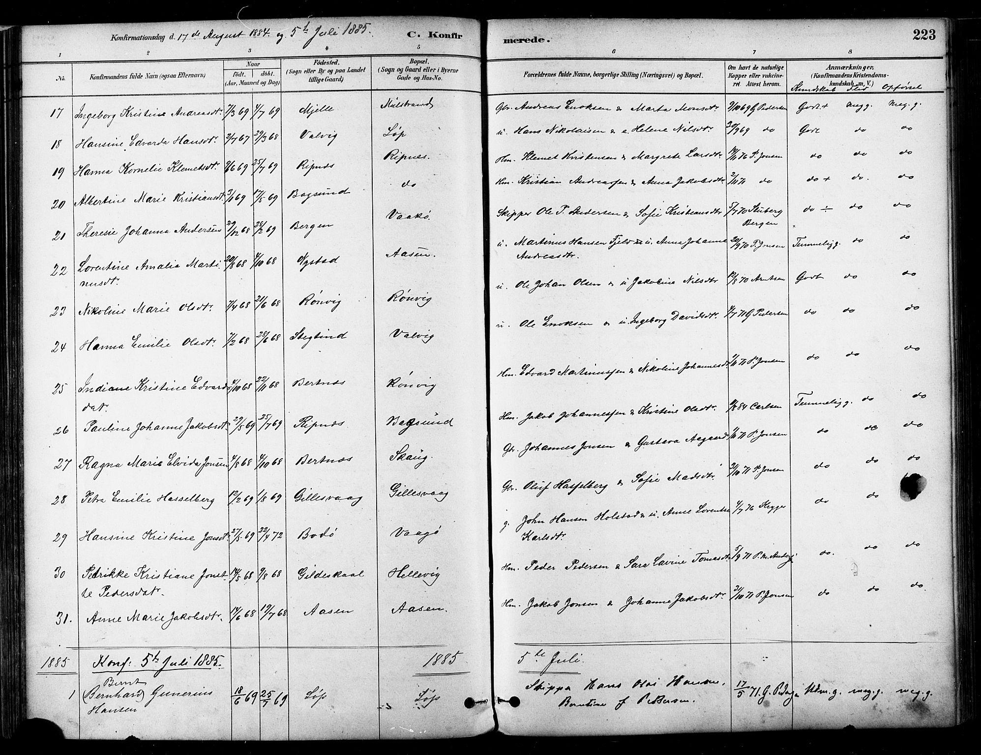 SAT, Ministerialprotokoller, klokkerbøker og fødselsregistre - Nordland, 802/L0054: Ministerialbok nr. 802A01, 1879-1893, s. 223