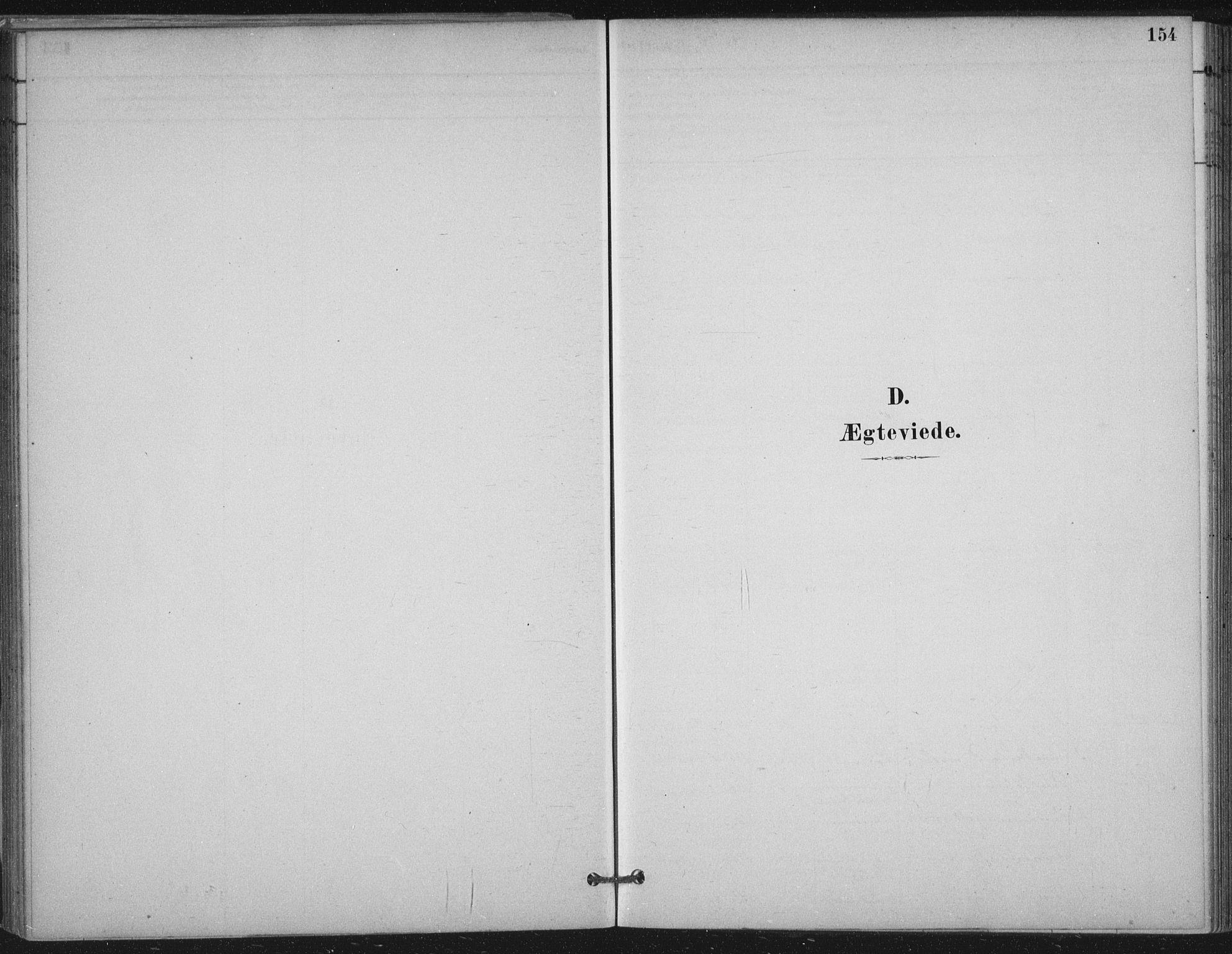 SAT, Ministerialprotokoller, klokkerbøker og fødselsregistre - Nord-Trøndelag, 710/L0095: Ministerialbok nr. 710A01, 1880-1914, s. 154
