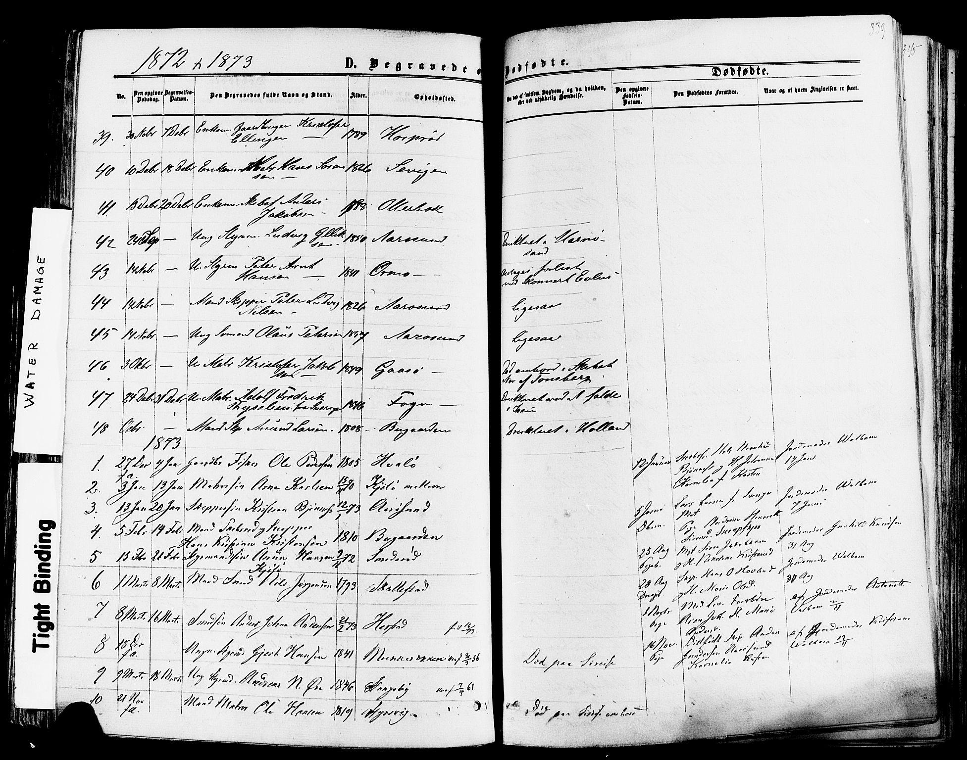 SAKO, Nøtterøy kirkebøker, F/Fa/L0007: Ministerialbok nr. I 7, 1865-1877, s. 339