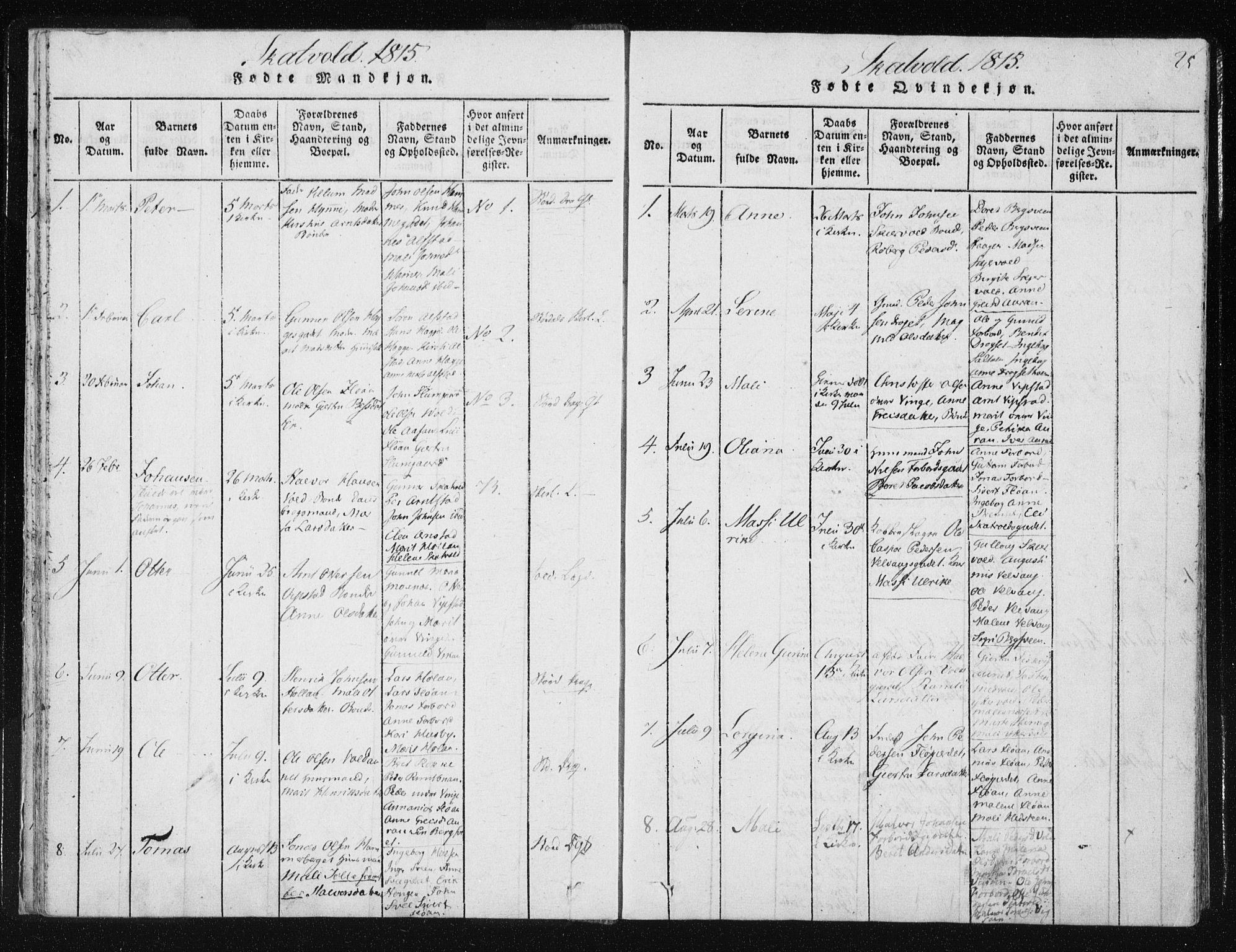 SAT, Ministerialprotokoller, klokkerbøker og fødselsregistre - Nord-Trøndelag, 709/L0061: Ministerialbok nr. 709A08 /2, 1815-1819, s. 25
