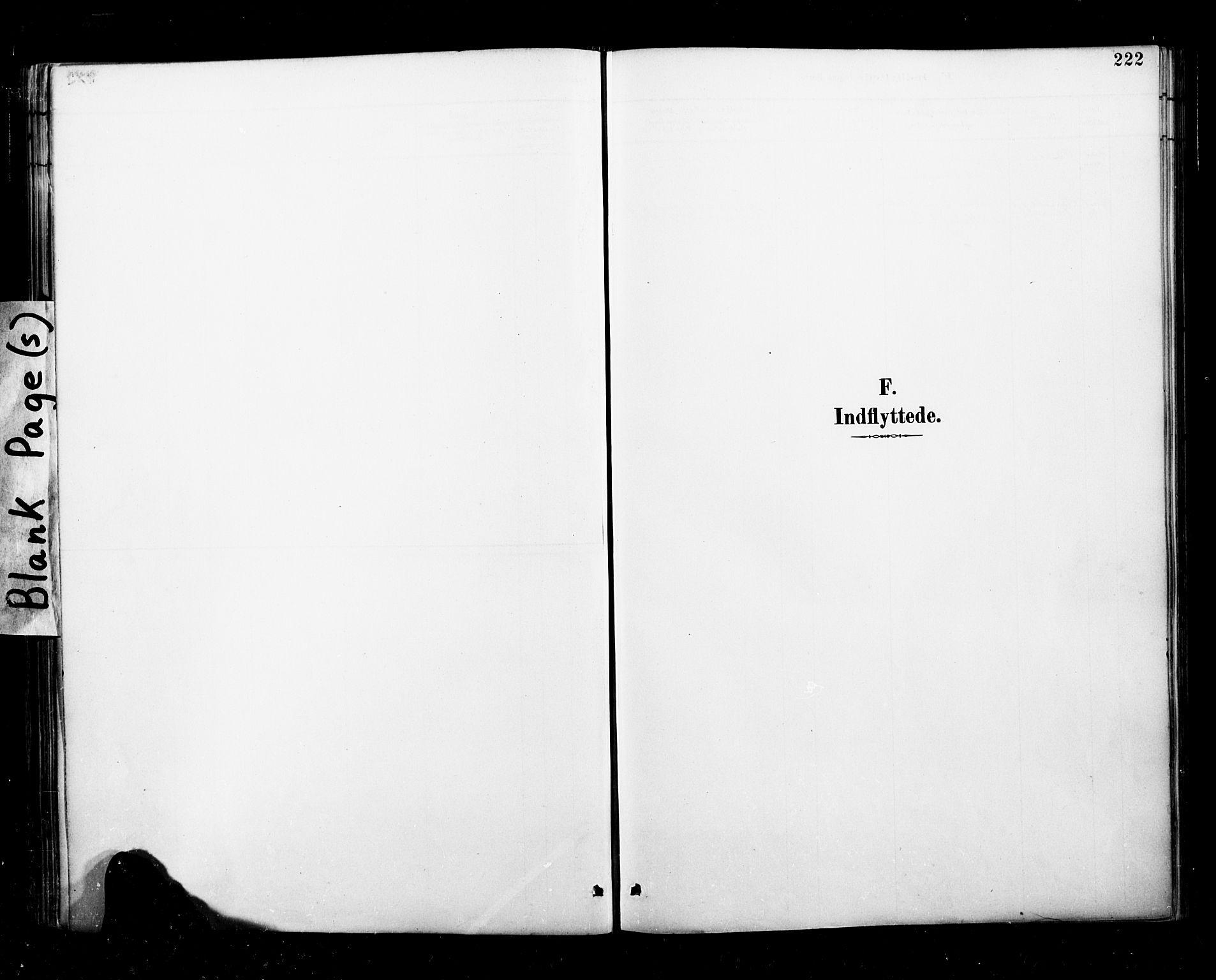 SAT, Ministerialprotokoller, klokkerbøker og fødselsregistre - Nordland, 827/L0401: Ministerialbok nr. 827A13, 1887-1905, s. 222