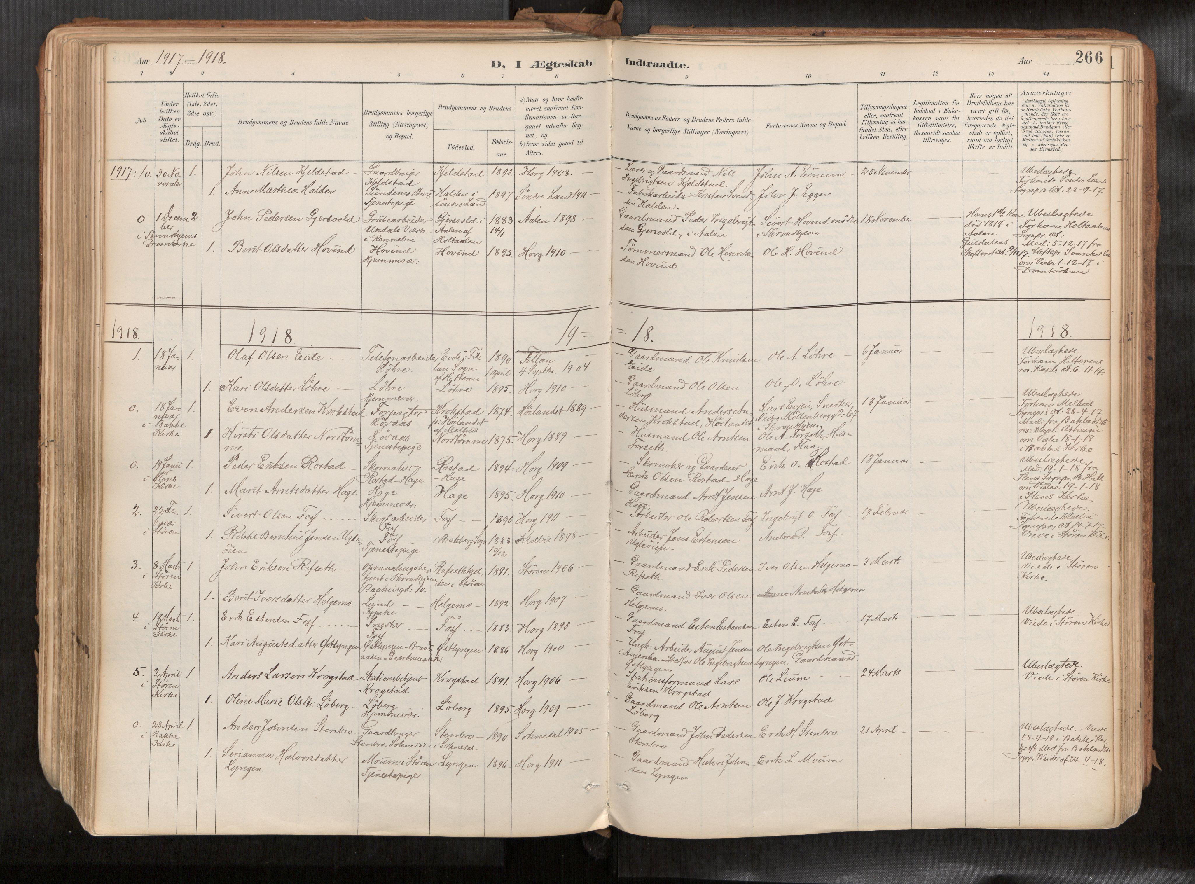SAT, Ministerialprotokoller, klokkerbøker og fødselsregistre - Sør-Trøndelag, 692/L1105b: Ministerialbok nr. 692A06, 1891-1934, s. 266